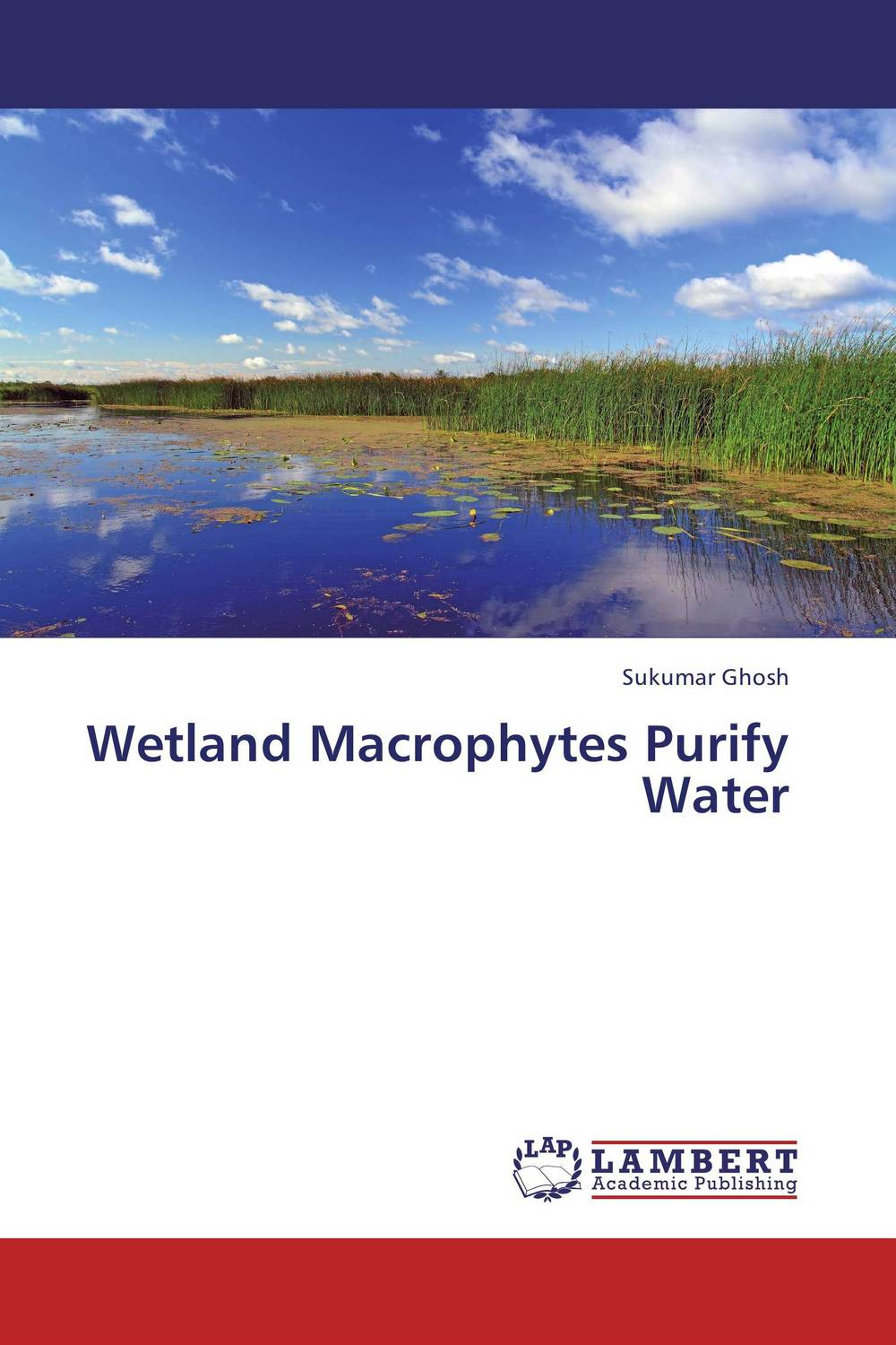 Wetland Macrophytes Purify Water bride of the water god v 3