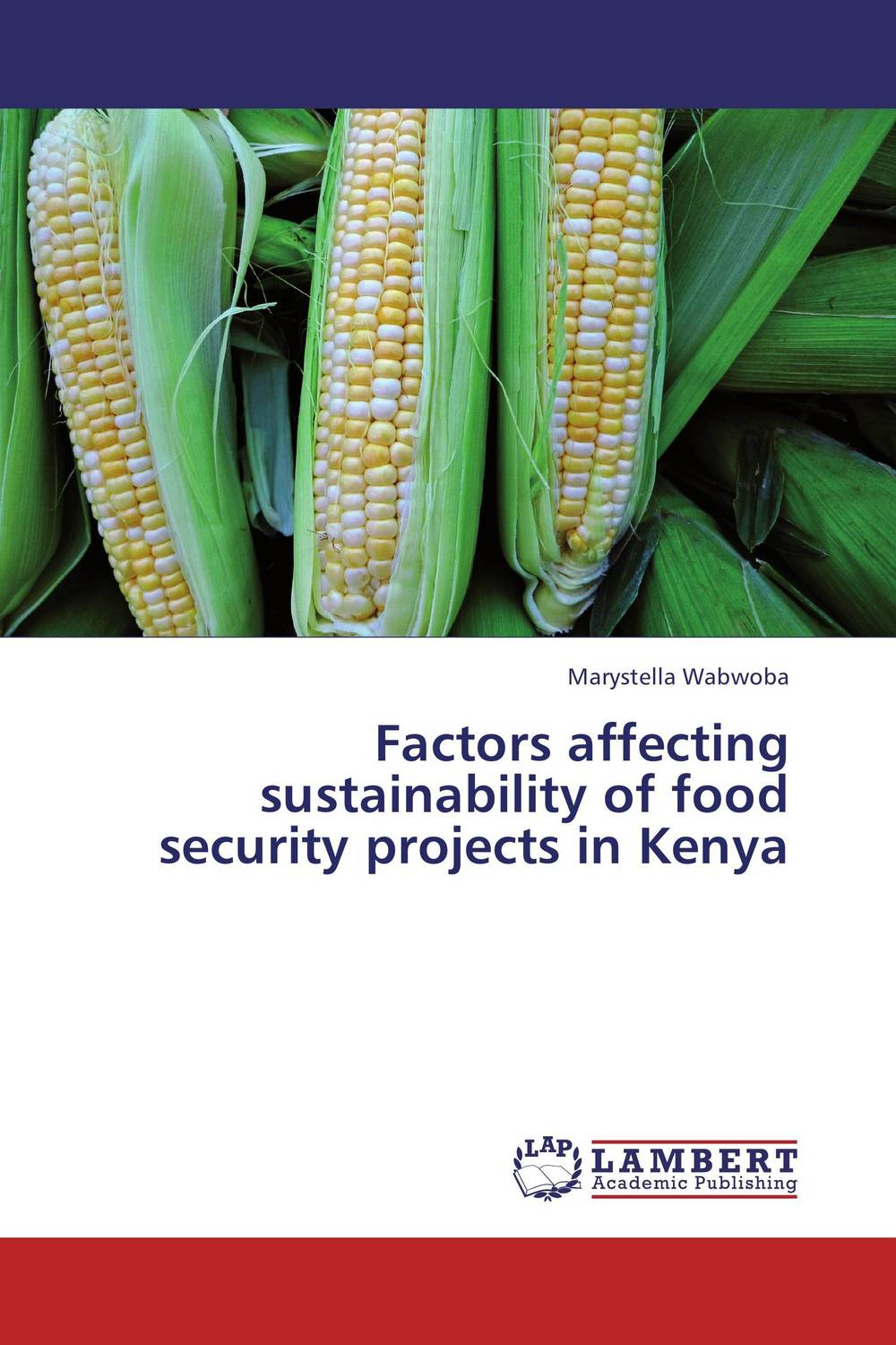 Factors affecting sustainability of food security projects in Kenya