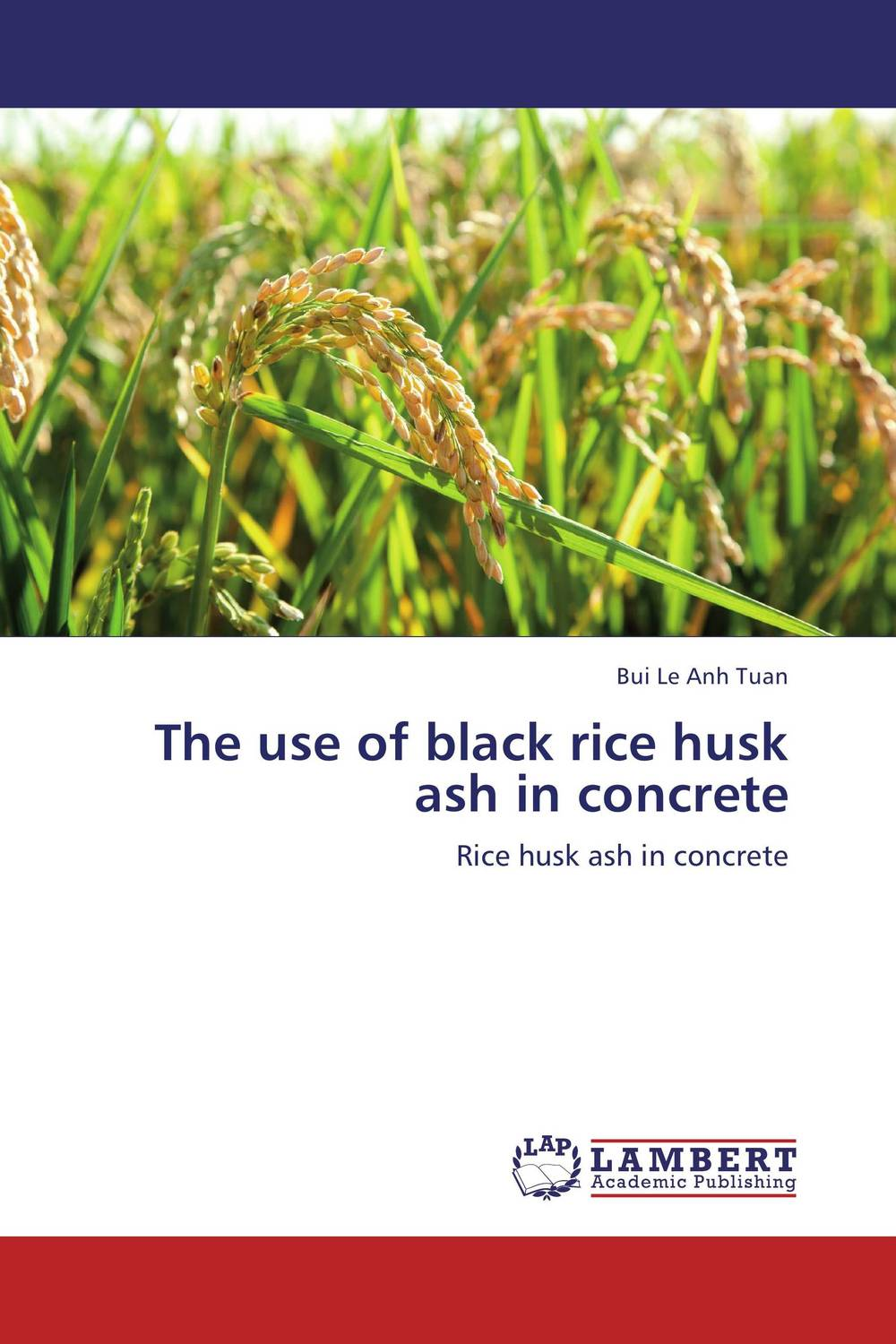 The use of black rice husk ash in concrete fathollah sajedi applied activation techniques on cement slag mortars and concretes