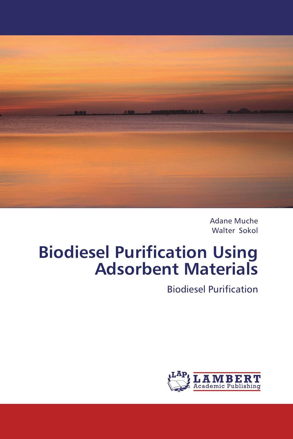 Biodiesel Purification Using Adsorbent Materials the effective method for atmosphere co purification
