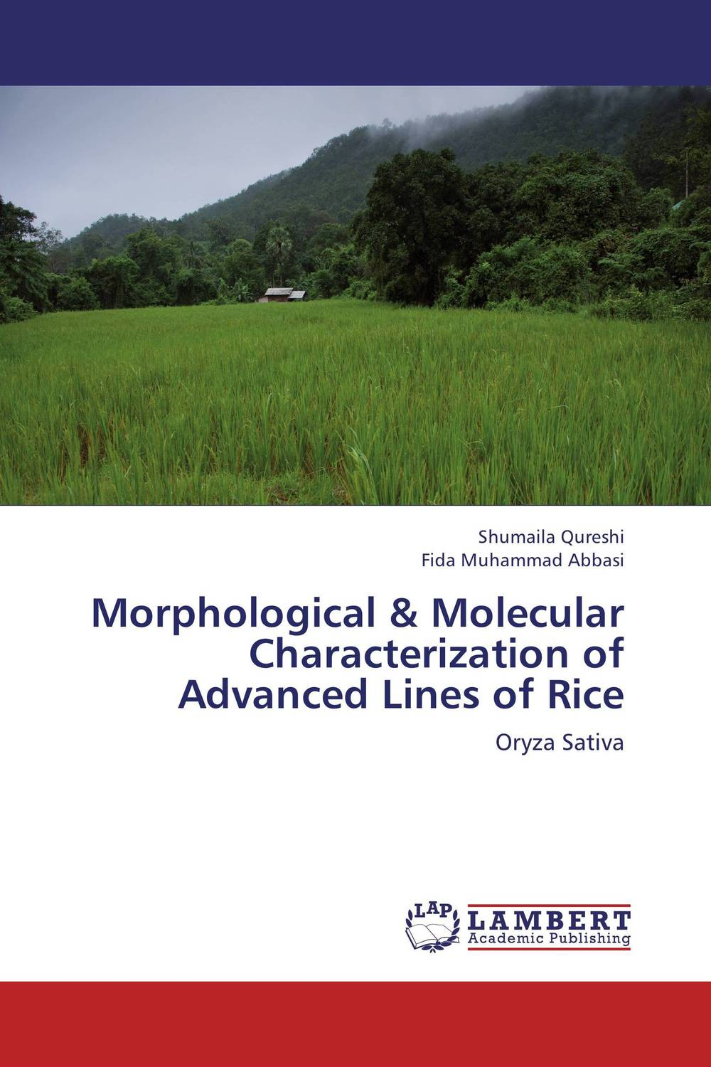 Morphological & Molecular Characterization of Advanced Lines of Rice jyoti yadav arvind kumar and lalit kumar molecular characterization of lactamase e coli and klebsiella spp