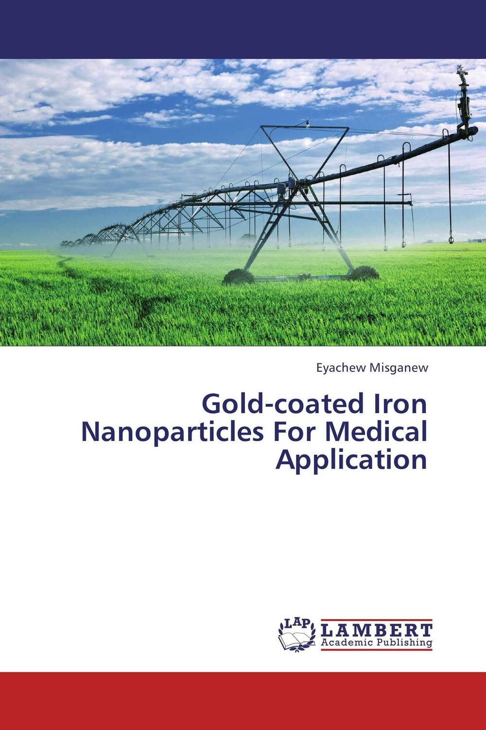 Gold-coated Iron Nanoparticles For Medical Application starch capped gold nanoparticles for catechol biosensor
