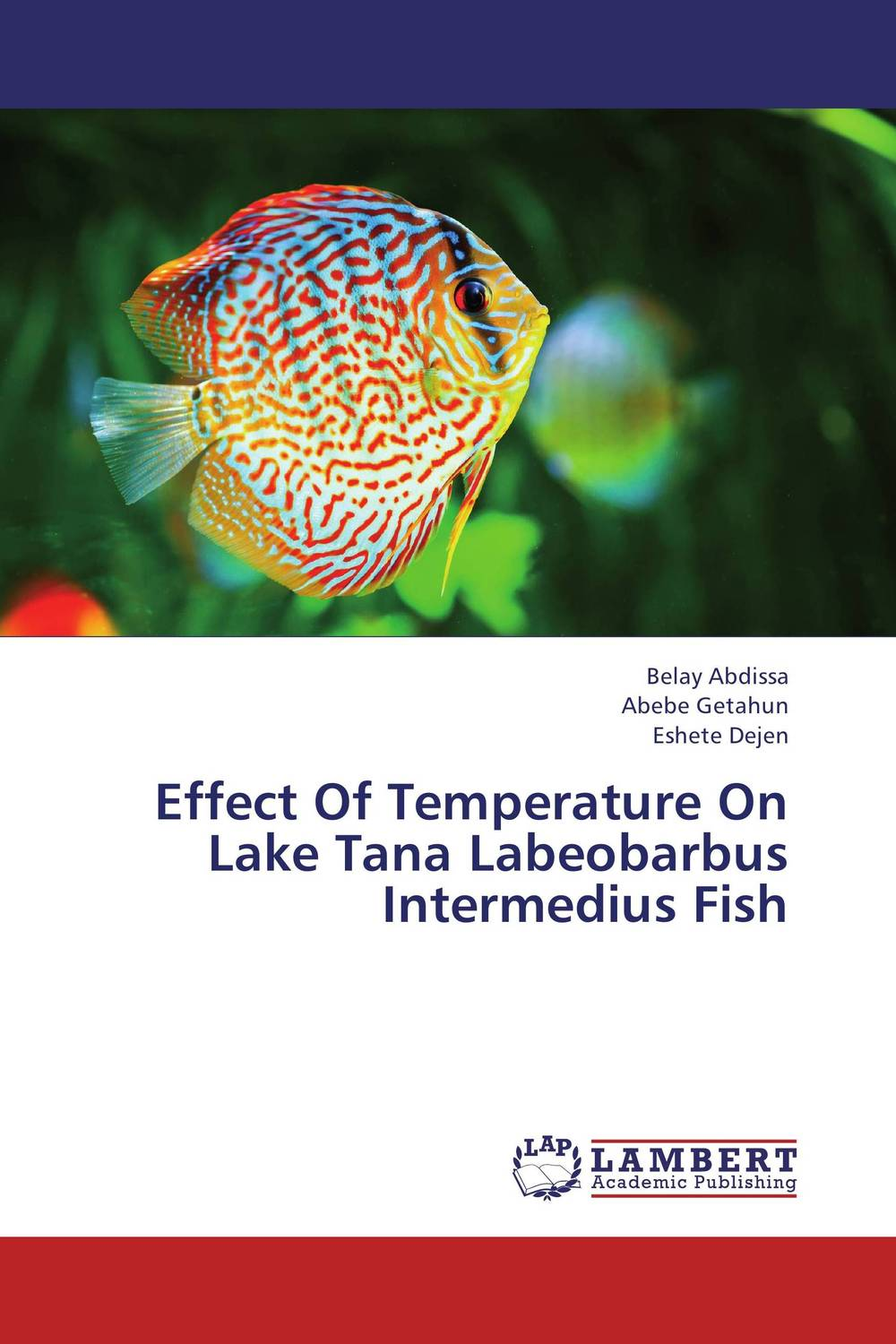 Effect Of Temperature On Lake Tana Labeobarbus Intermedius Fish week at the lake