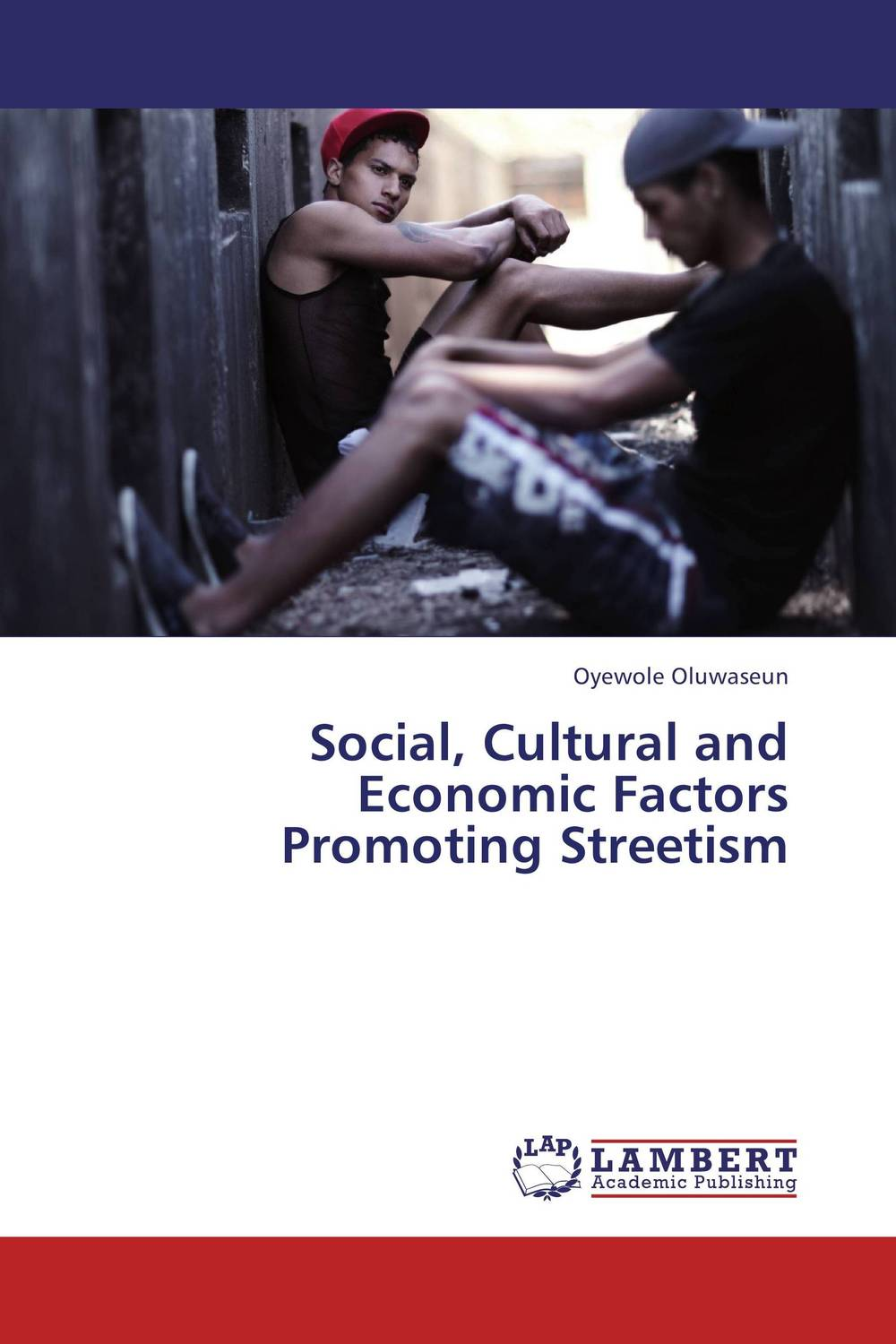 Social, Cultural and Economic Factors Promoting Streetism economic methodology