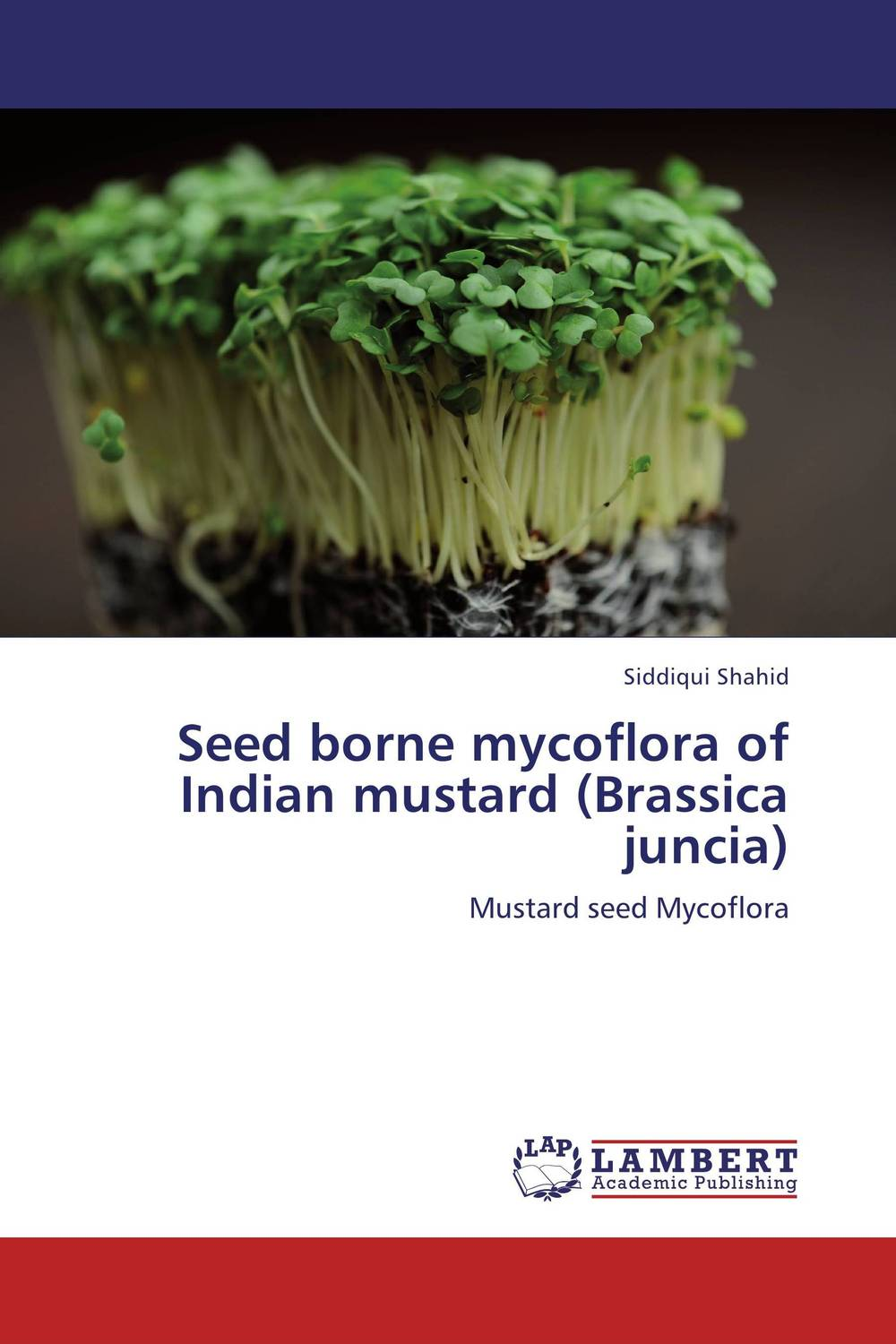 Seed borne mycoflora of Indian mustard (Brassica juncia) seed dormancy and germination