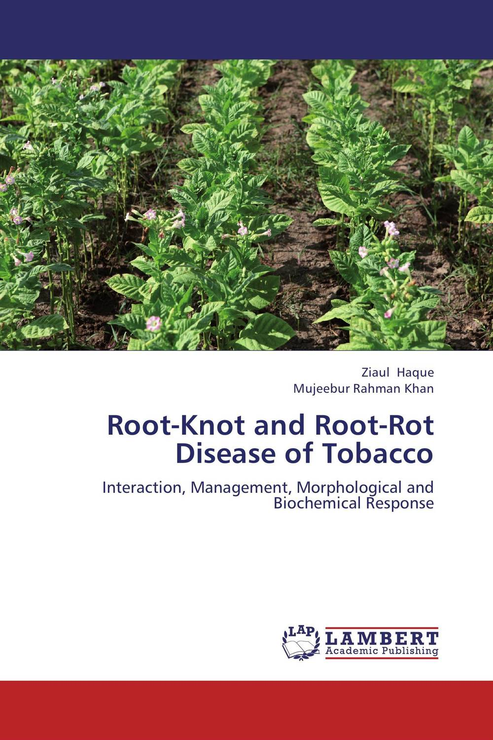 Root-Knot and Root-Rot Disease of Tobacco the teeth with root canal students to practice root canal preparation and filling actually