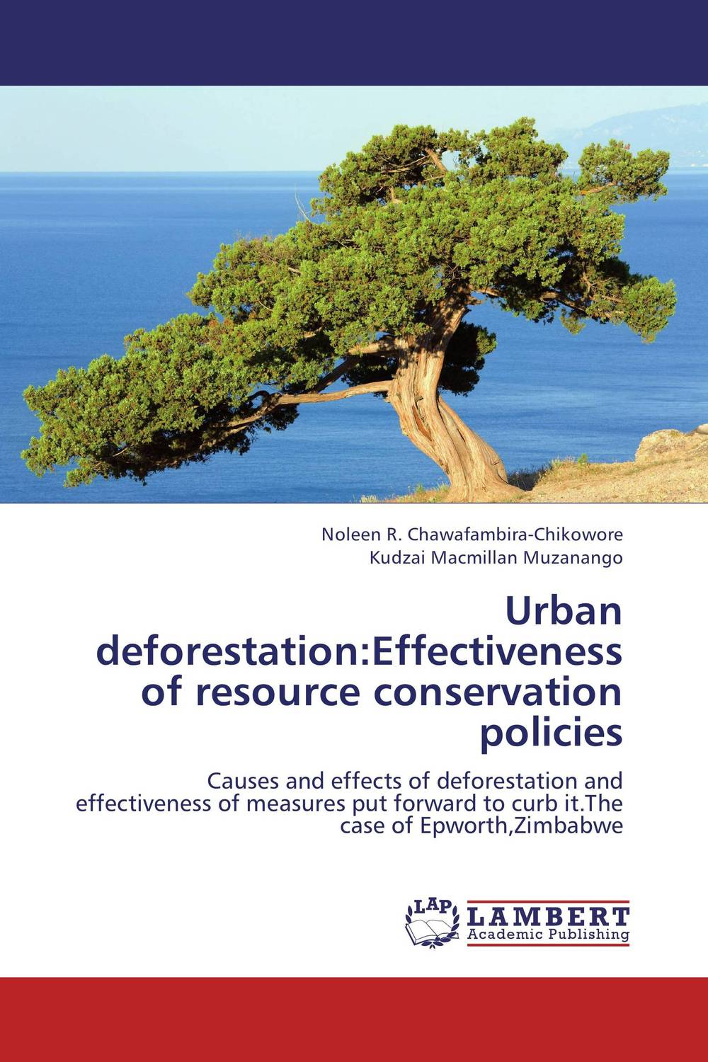Urban deforestation:Effectiveness of resource conservation policies the prevalence causes and effects of in law conflicts in zimbabwe