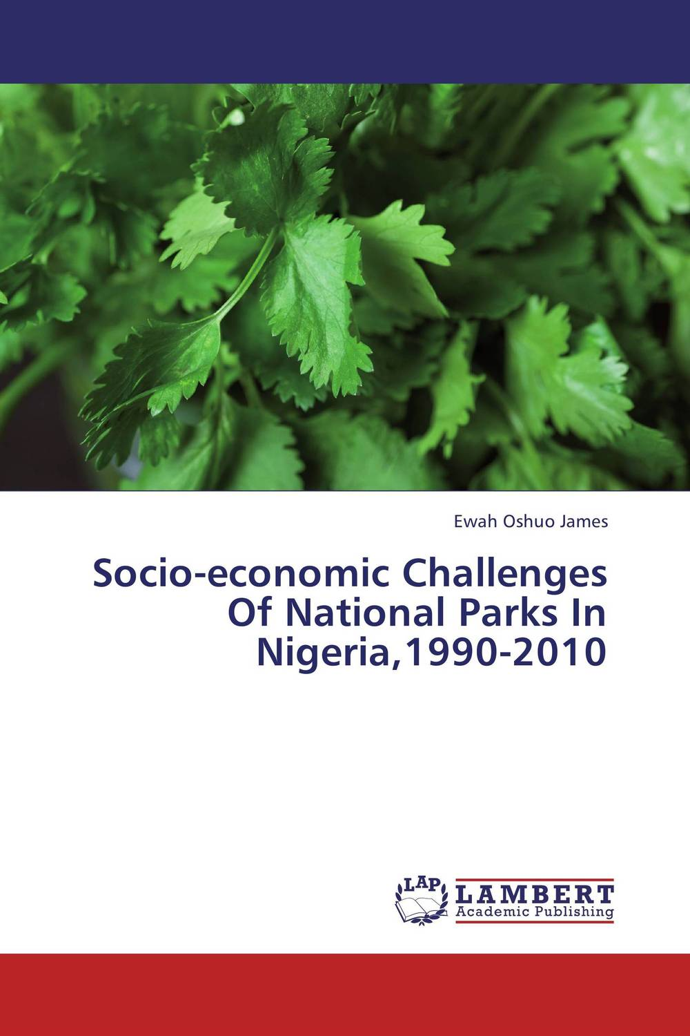 Socio-economic Challenges Of National Parks In Nigeria,1990-2010 gender and socio economic wellbeing of older persons in nigeria