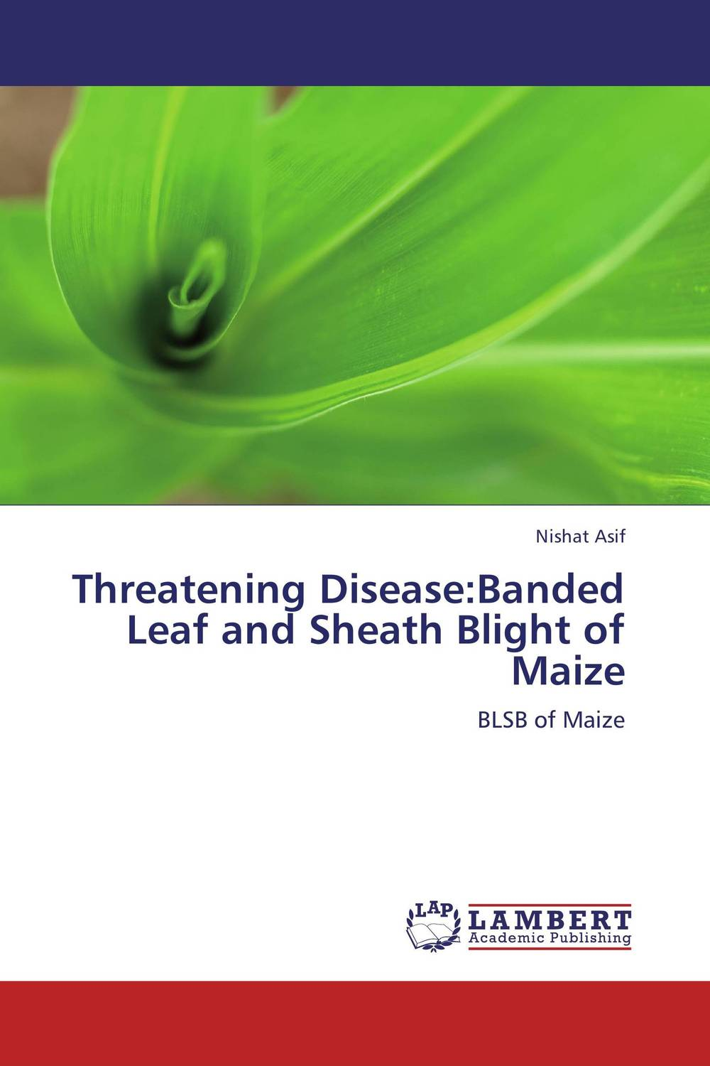 Threatening Disease:Banded Leaf and Sheath Blight of Maize fungicidal management of sheath blight of rice