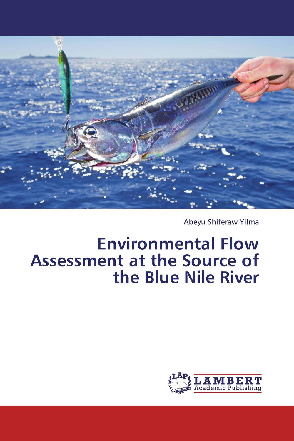 купить Environmental Flow Assessment at the Source of the Blue Nile River недорого