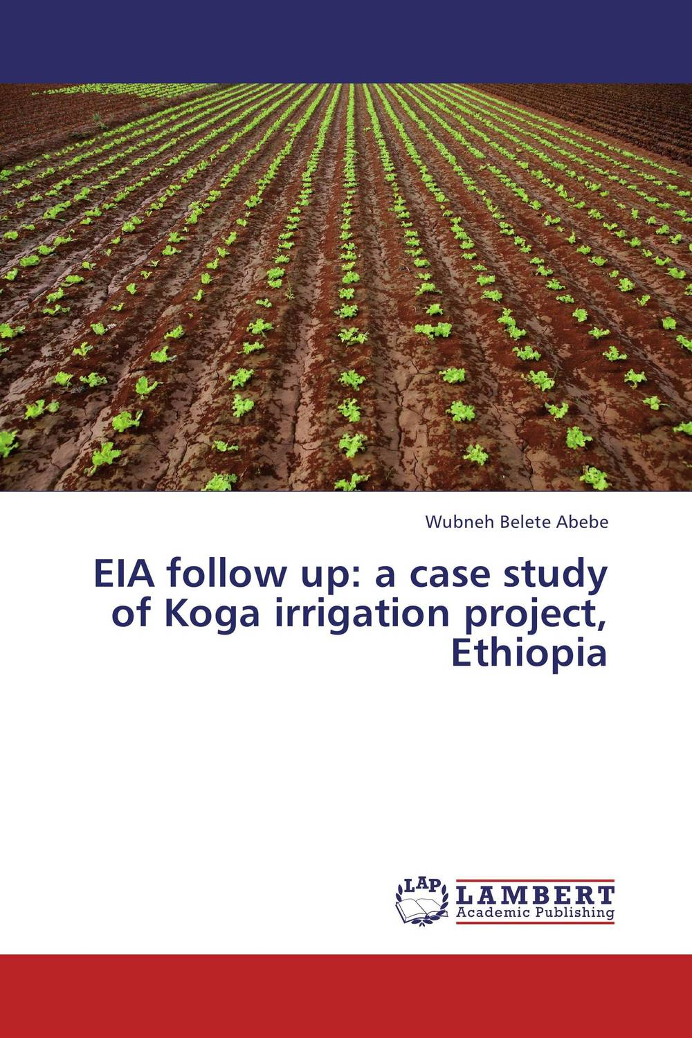 EIA follow up: a case study of Koga irrigation project, Ethiopia
