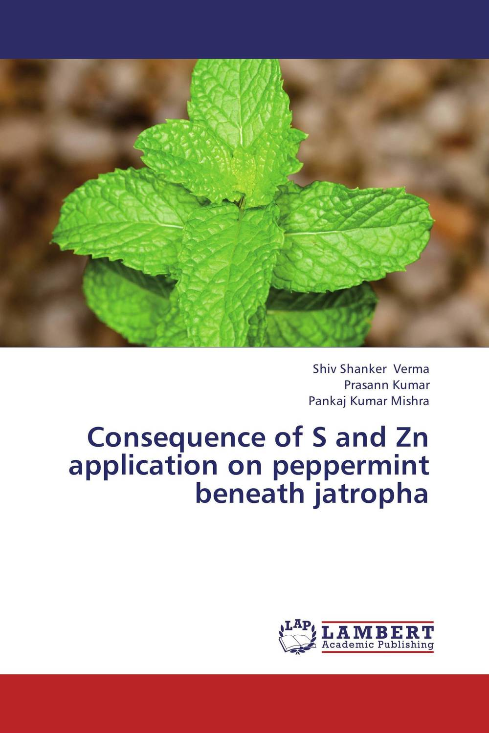 Consequence of S and Zn application on peppermint beneath jatropha parnas bibliotheca microbiologica brucella phages properties and application