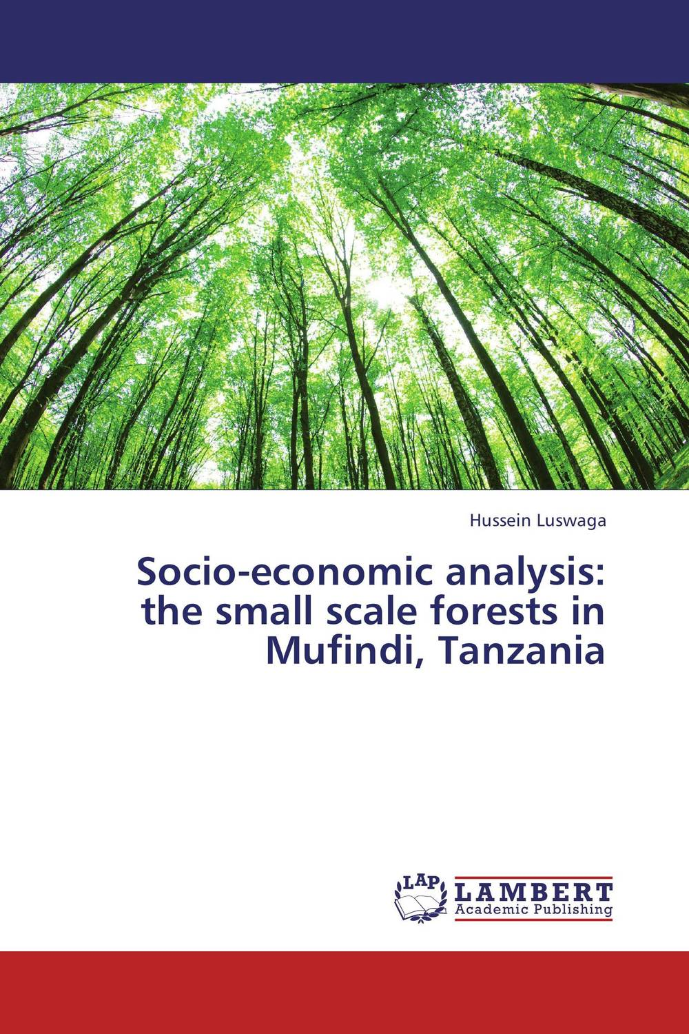Socio-economic analysis: the small scale forests in Mufindi, Tanzania xuan liu time consistency of optimal policy in a small open economy
