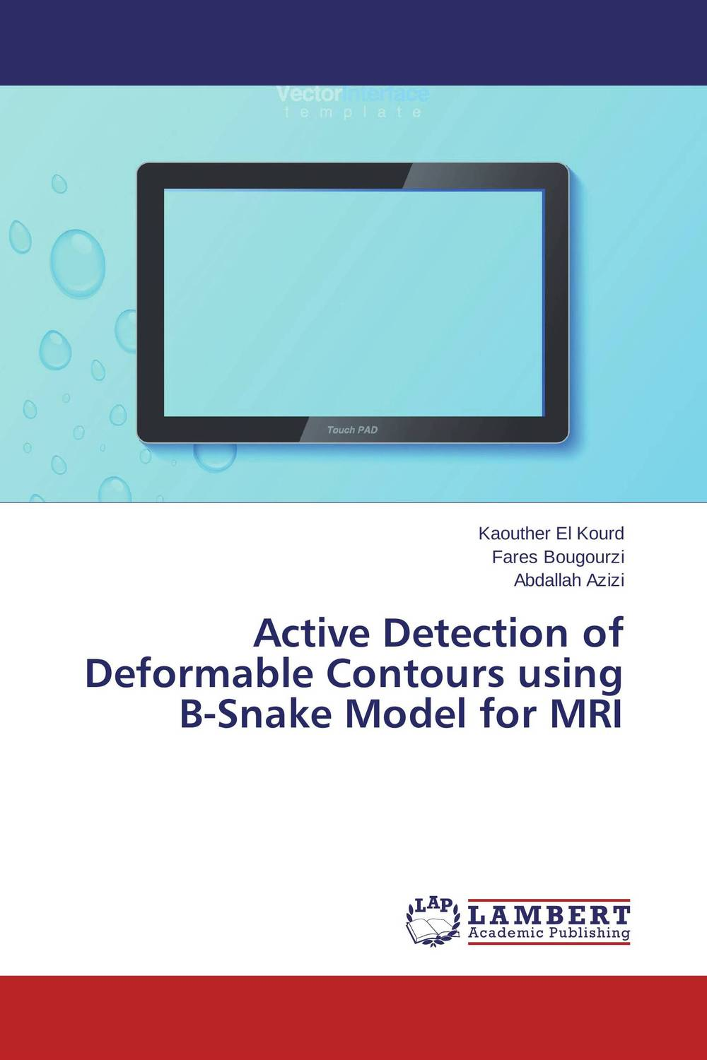 Active Detection of Deformable Contours using B-Snake Model for MRI