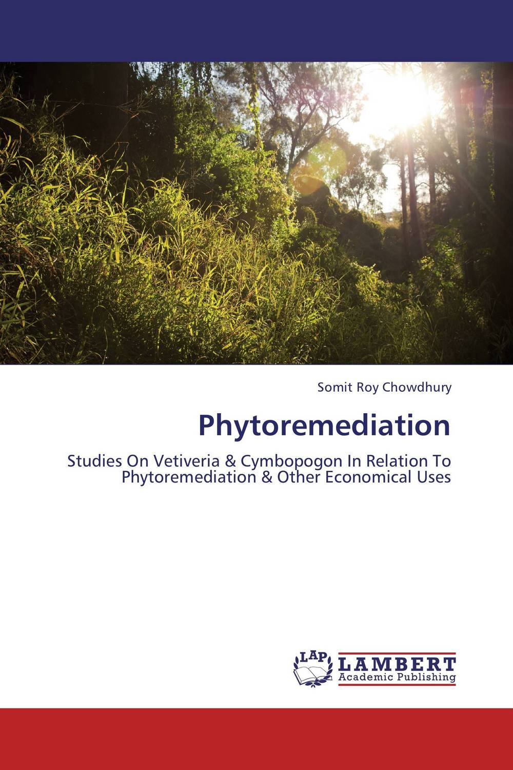 Phytoremediation g voigt remediation of contaminated environments 14