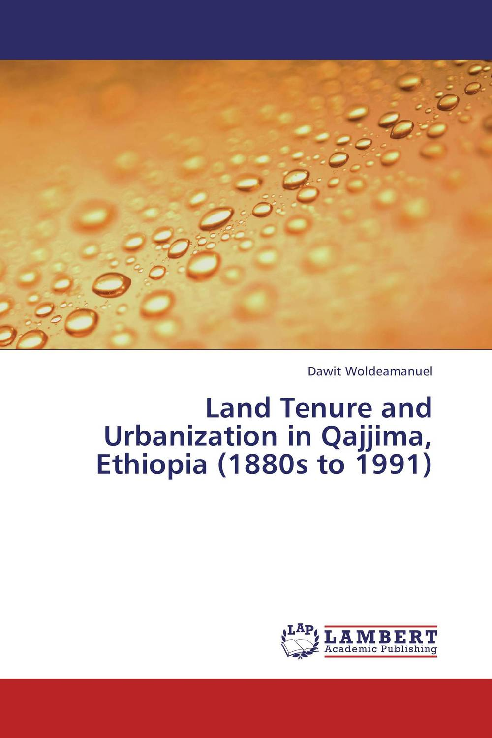 Land Tenure and Urbanization in Qajjima, Ethiopia (1880s to 1991) district substructures as agents of local governance