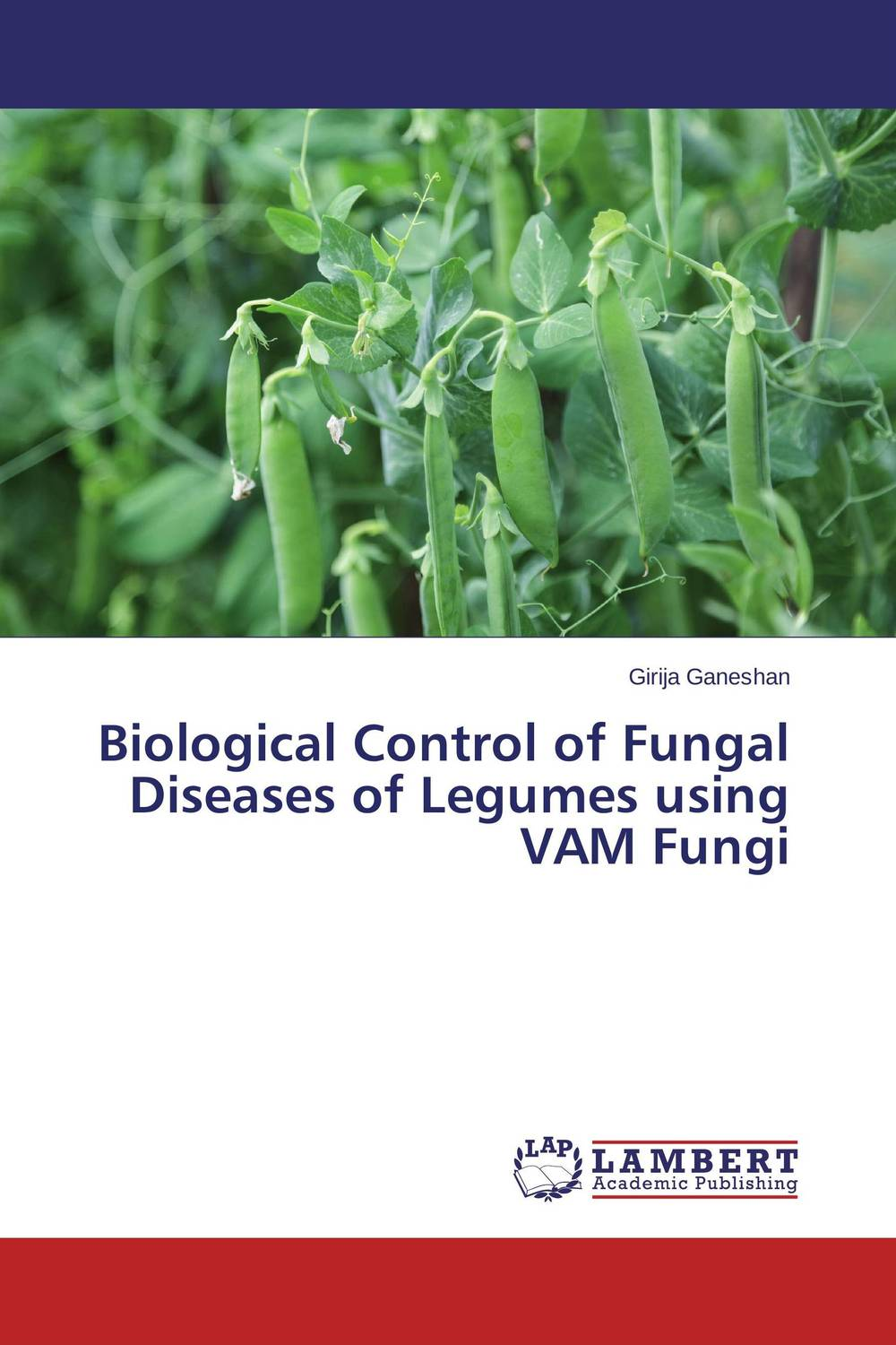 Biological Control of Fungal Diseases of Legumes using VAM Fungi h n gour pankaj sharma and rakesh kaushal pathological aspects and management of root rot of groundnut