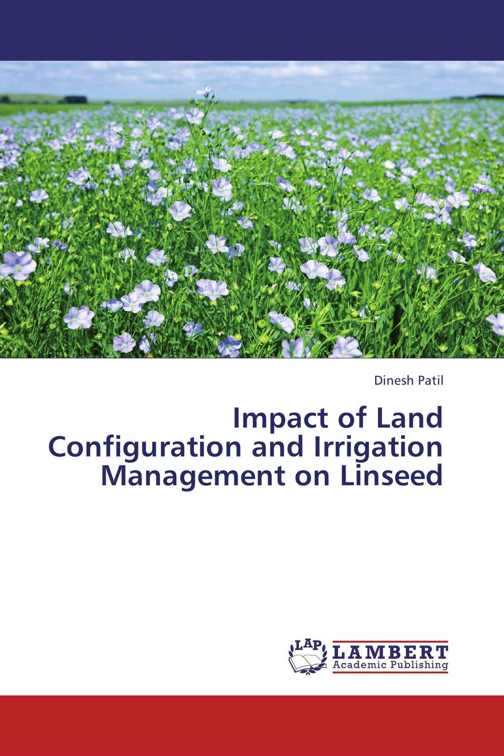 Impact of Land Configuration and Irrigation Management on Linseed