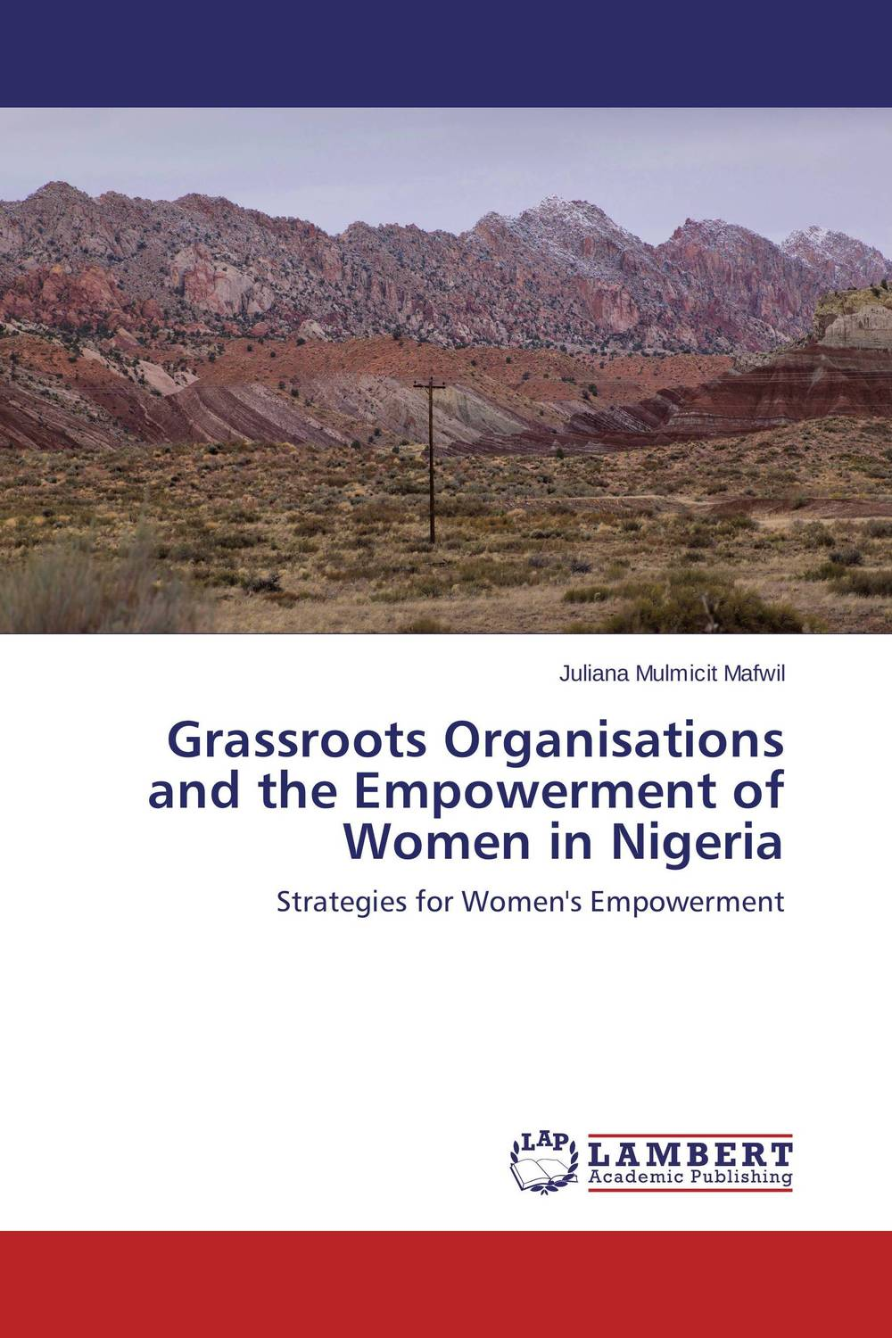 Grassroots Organisations and the Empowerment of Women in Nigeria the challenges experienced by non governmental organisations