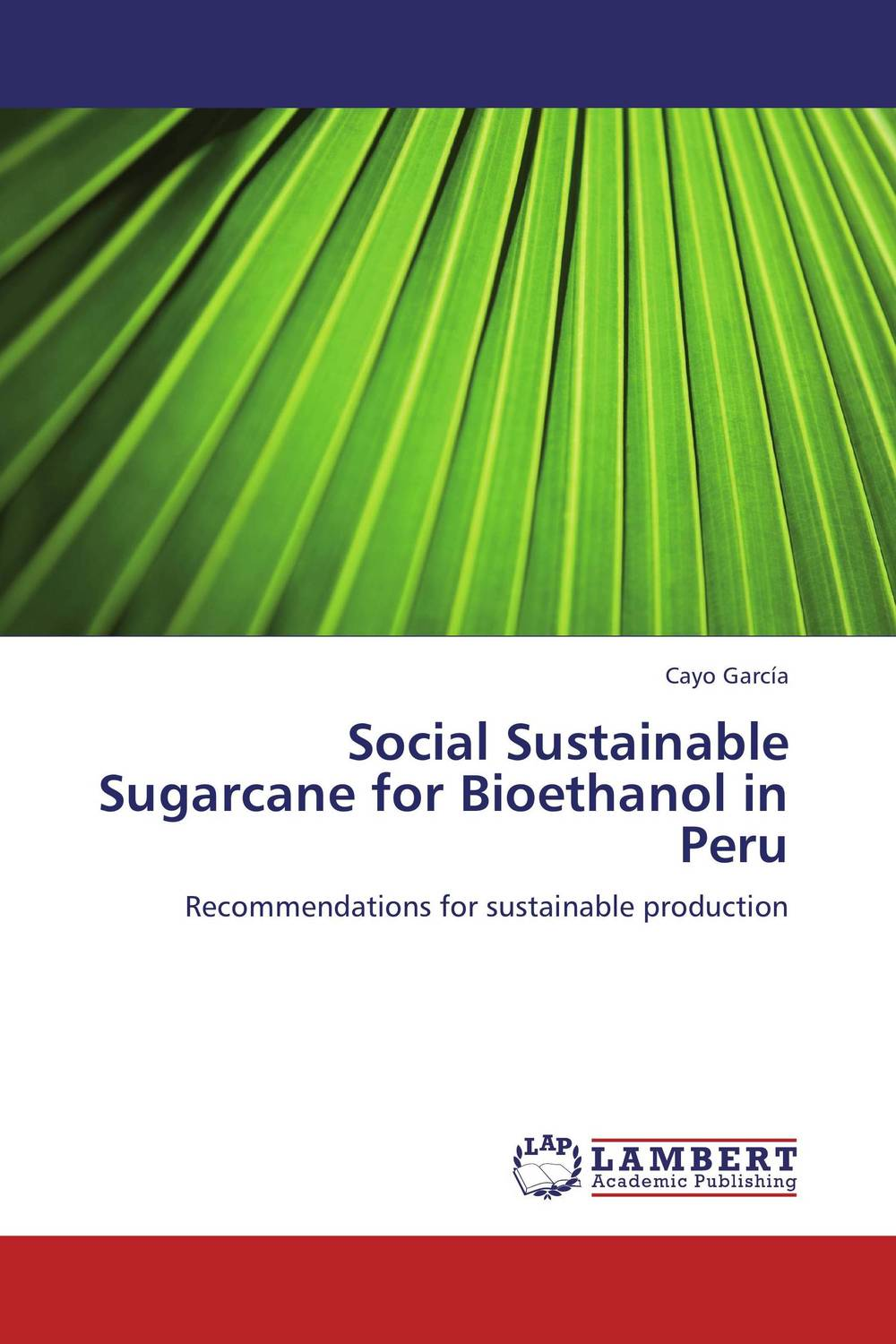 Social Sustainable Sugarcane for Bioethanol in Peru sadat khattab usama abdul raouf and tsutomu kodaki bio ethanol for future from woody biomass