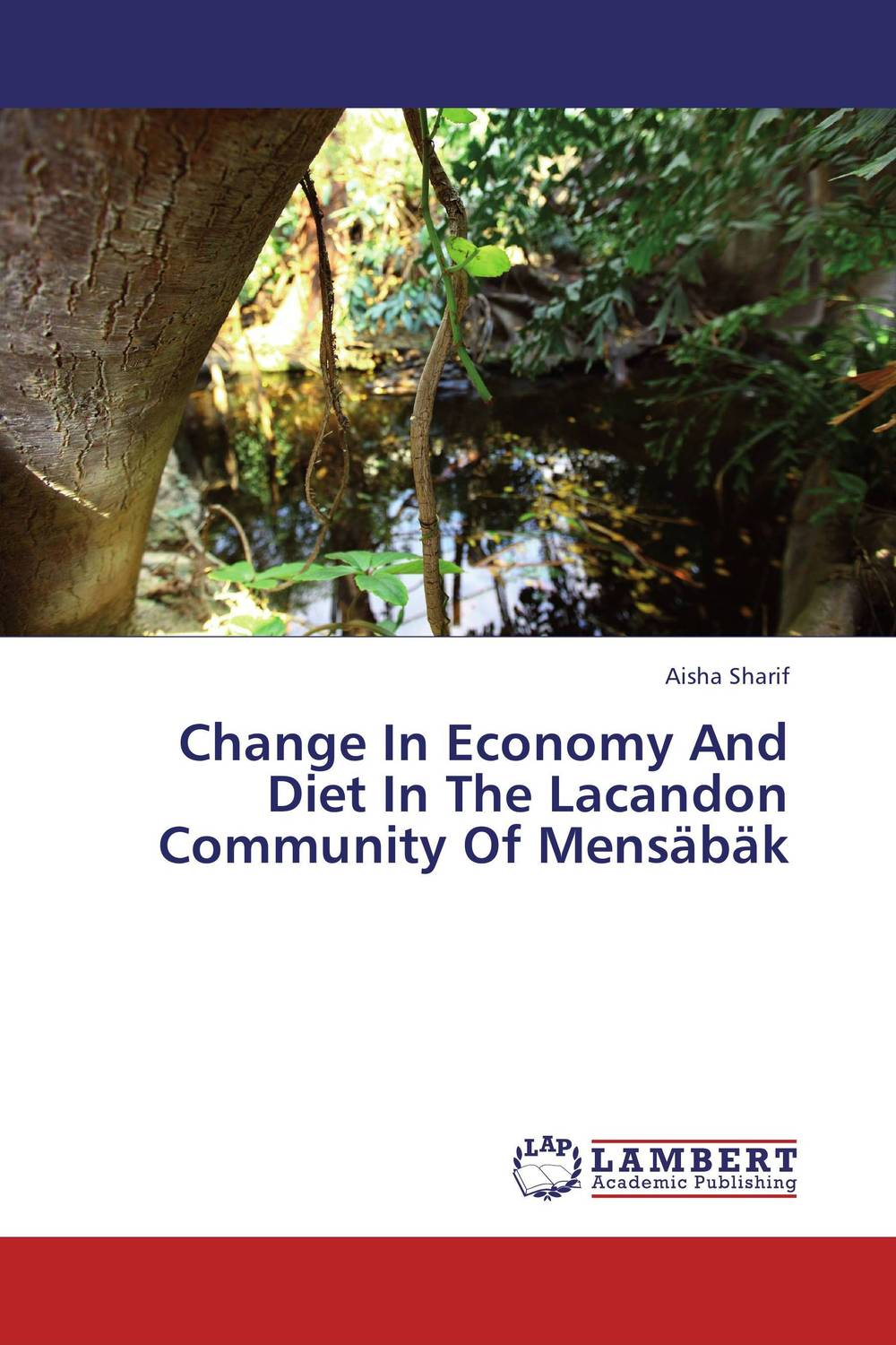Change In Economy And Diet In The Lacandon Community Of Mensabak walking the road of new economy