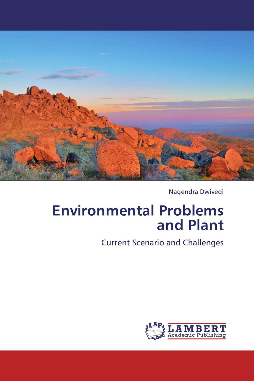 Environmental Problems and Plant impact of micro enterprises on plant diversity and rural livelihood