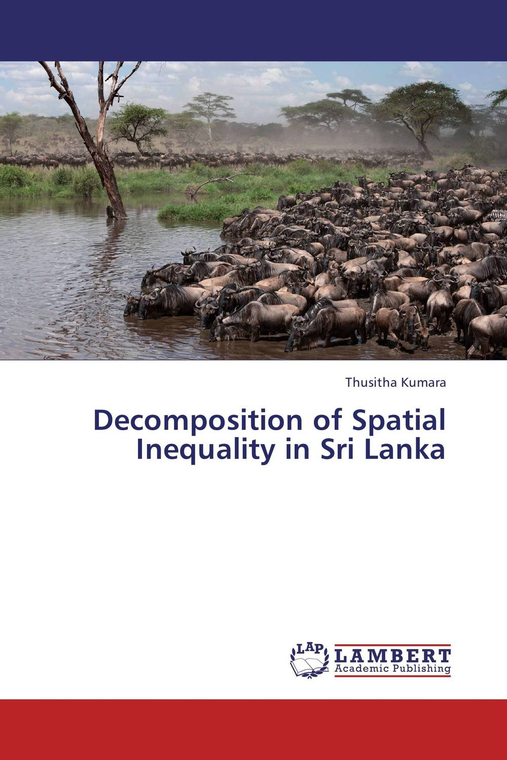 Decomposition of Spatial Inequality in Sri Lanka ]special places to stay india and sri lanka kristi