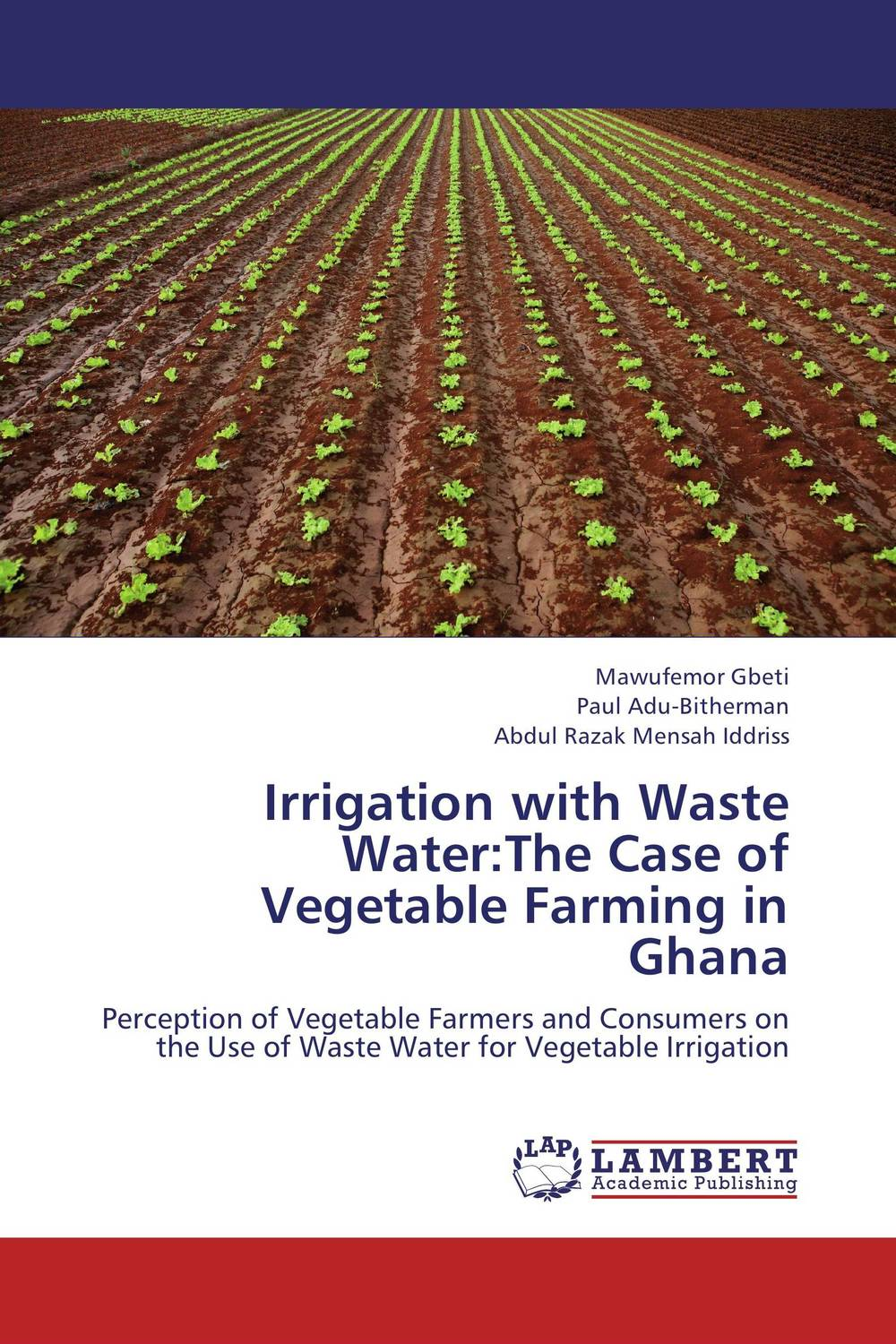 Irrigation with Waste Water:The Case of Vegetable Farming in Ghana bride of the water god v 3
