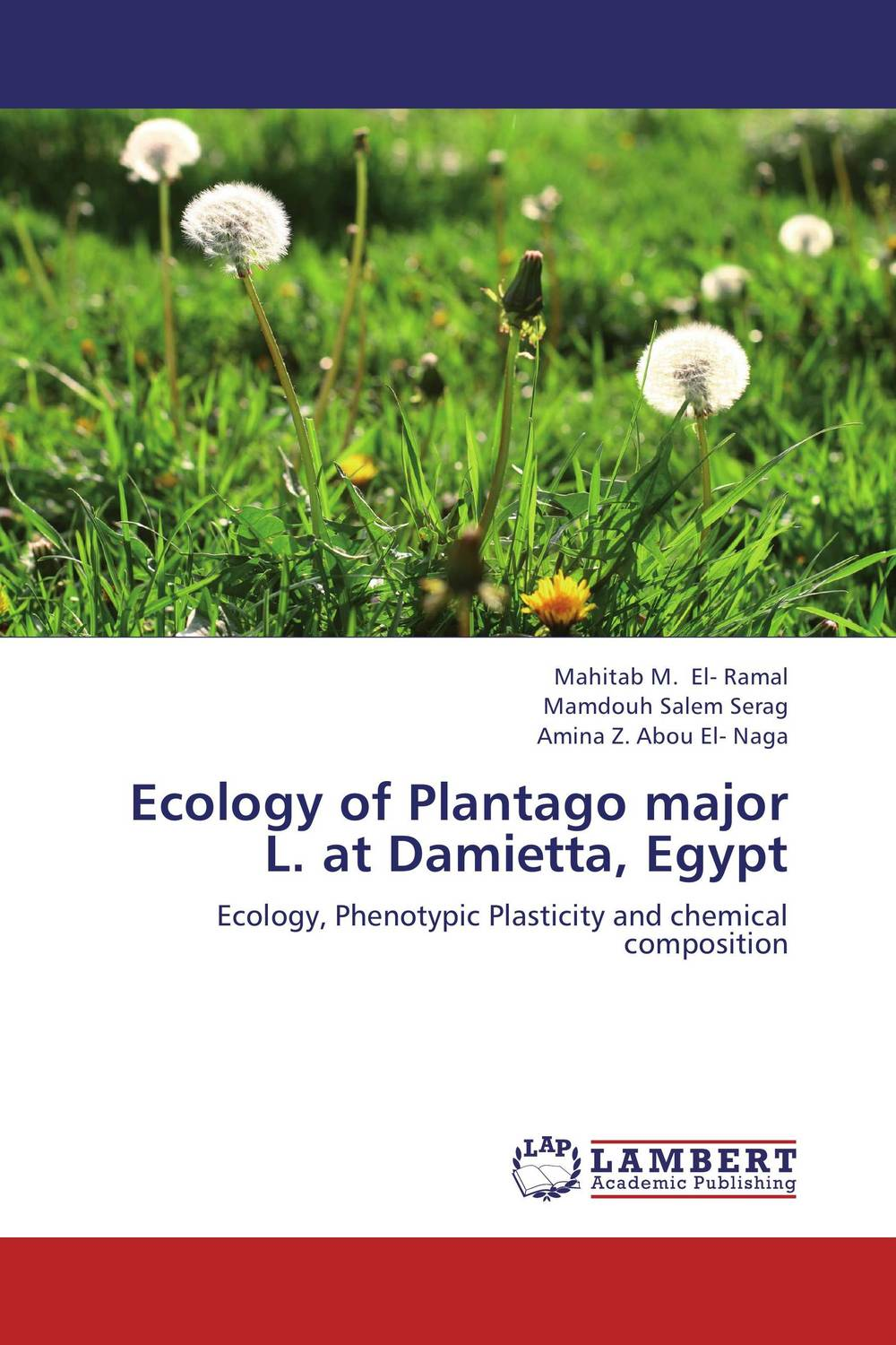 Ecology of Plantago major L. at Damietta, Egypt chemical ecology
