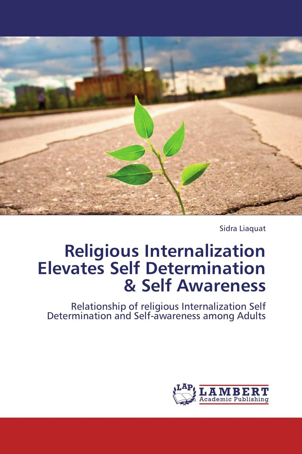 Religious Internalization Elevates Self Determination & Self Awareness internalization of environmental cost