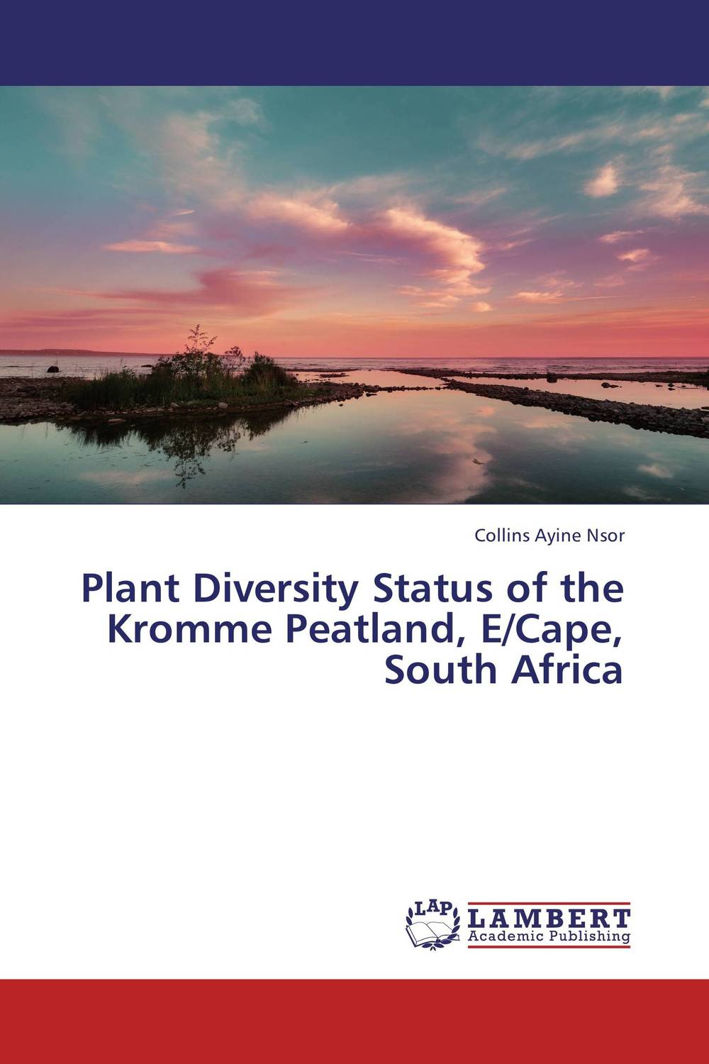Plant Diversity Status of the Kromme Peatland, E/Cape, South Africa arcade ndoricimpa inflation output growth and their uncertainties in south africa empirical evidence from an asymmetric multivariate garch m model