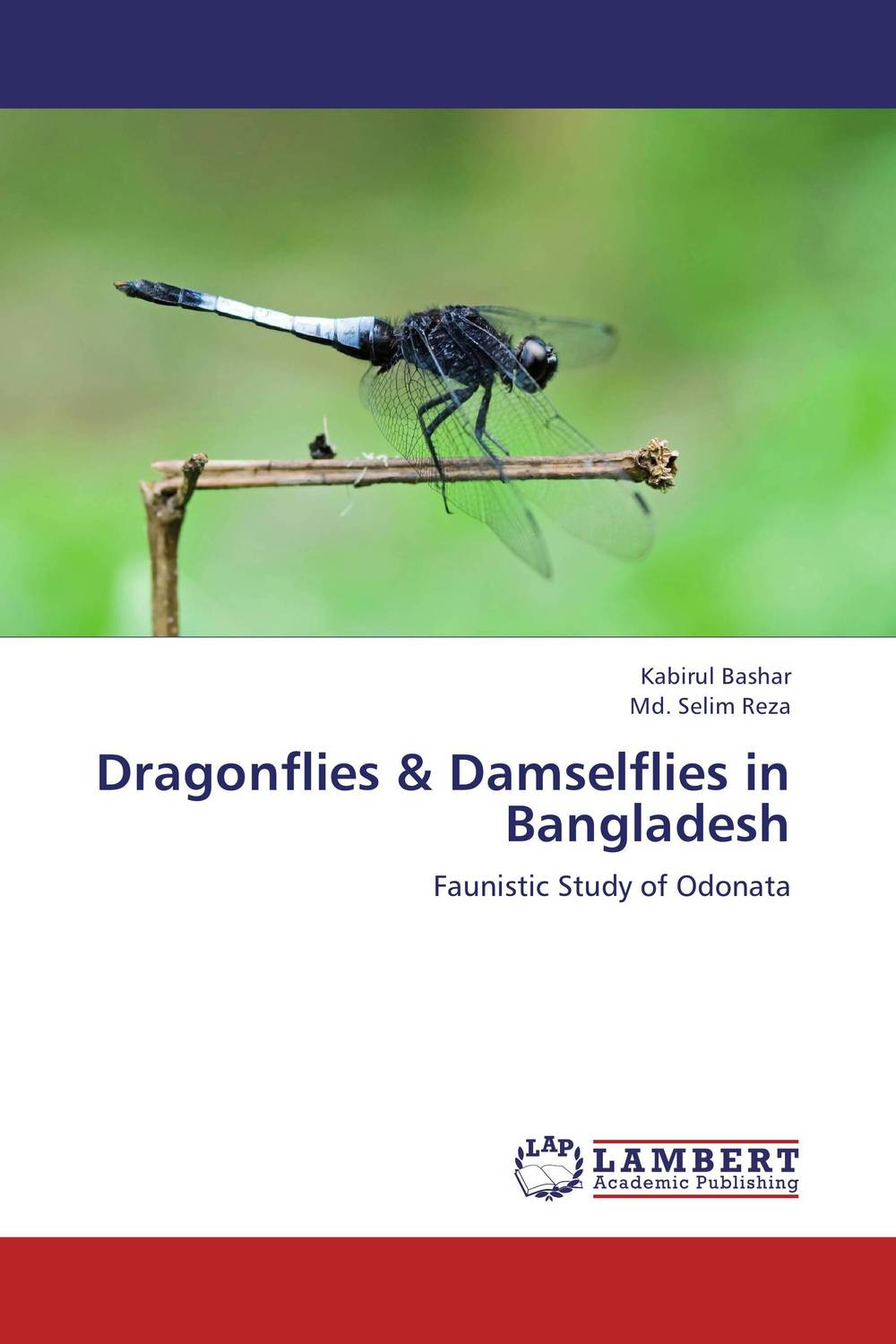 Dragonflies & Damselflies in Bangladesh the twenty three