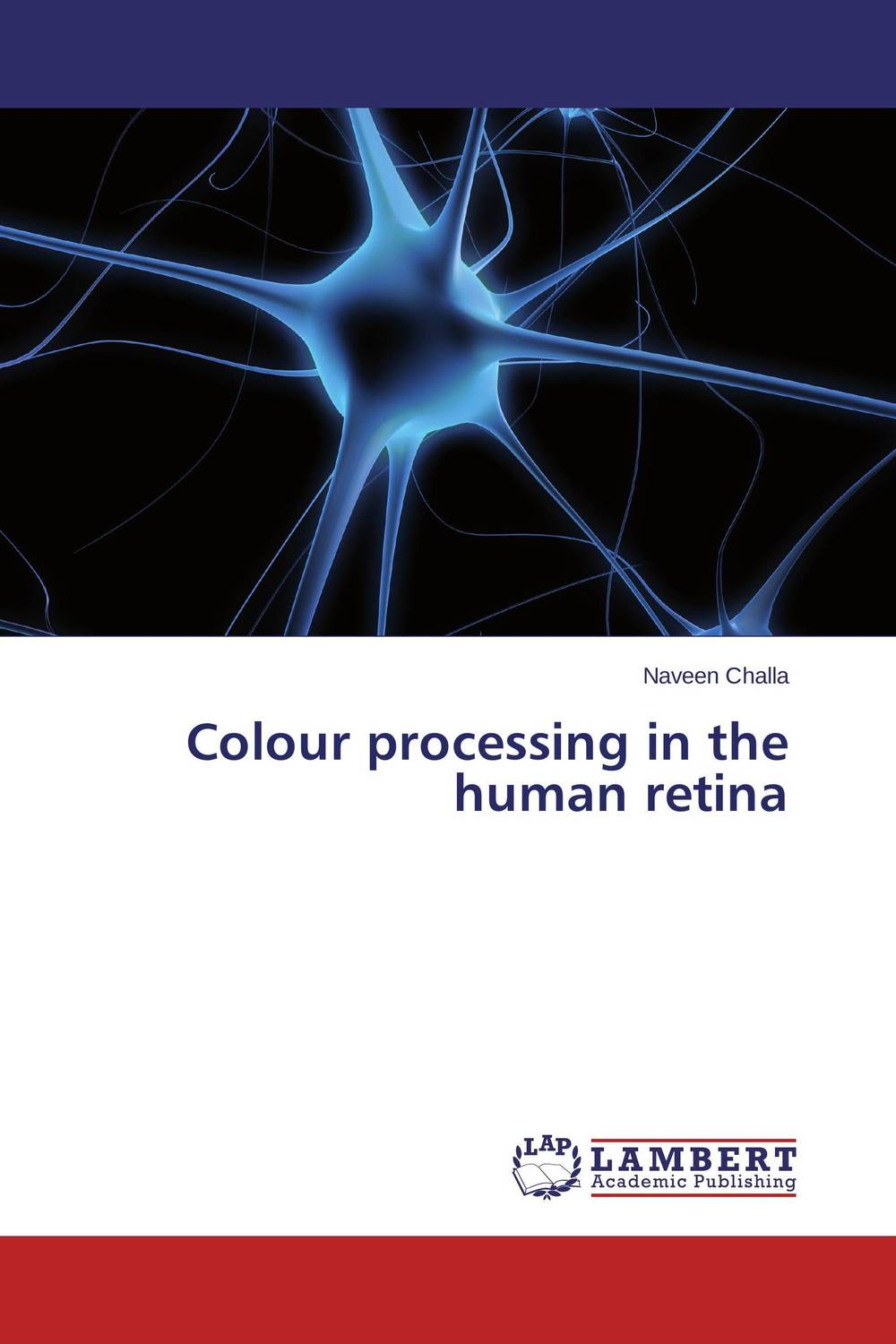 Colour processing in the human retina temporal processing of news