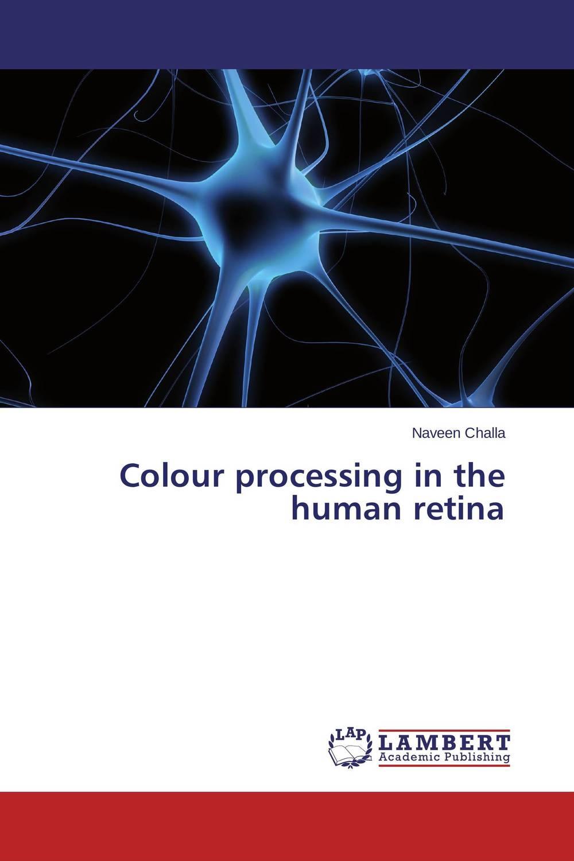 купить Colour processing in the human retina недорого