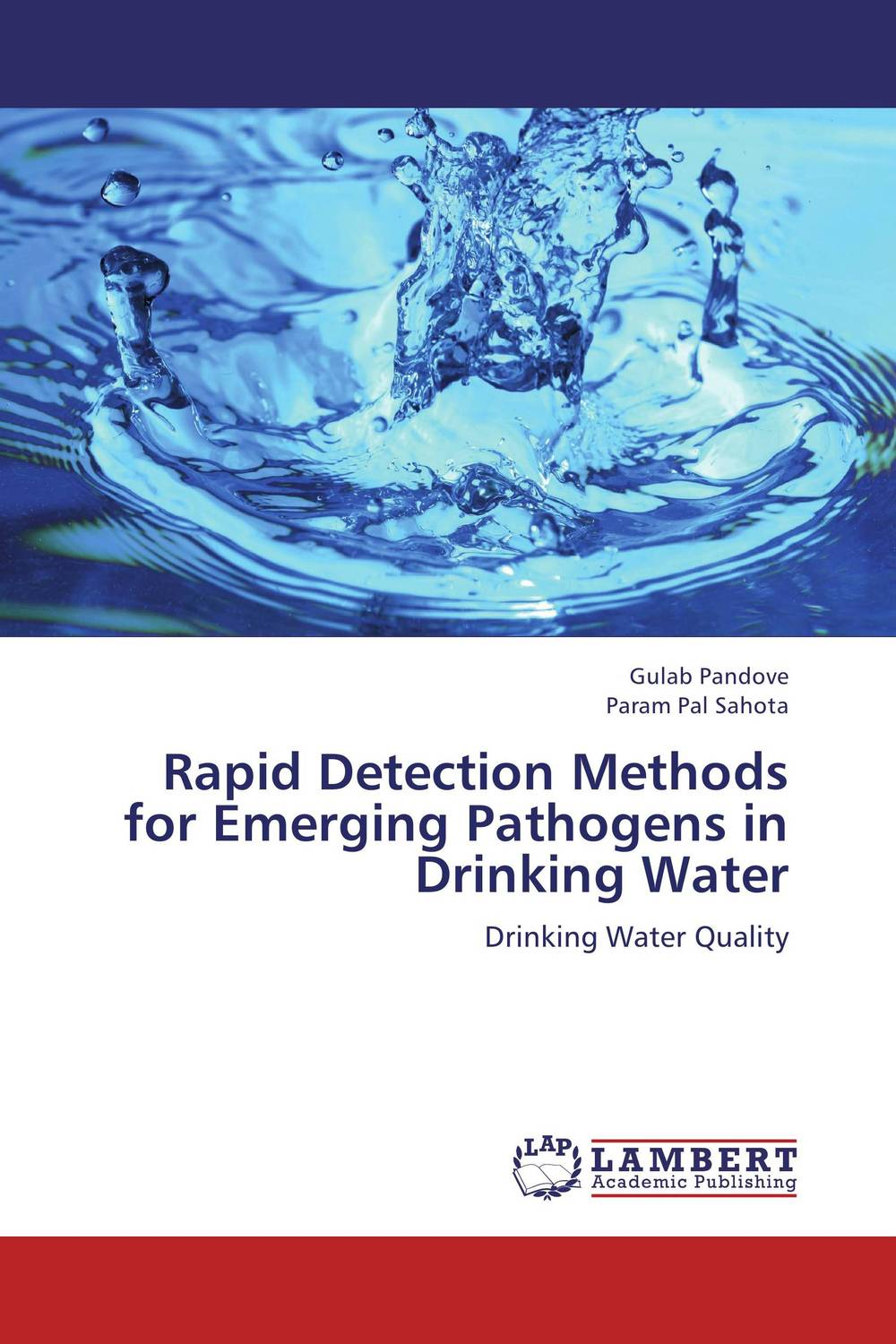 Rapid Detection Methods for Emerging Pathogens in Drinking Water health risk evaluation of uniport drinking water framework nigeria