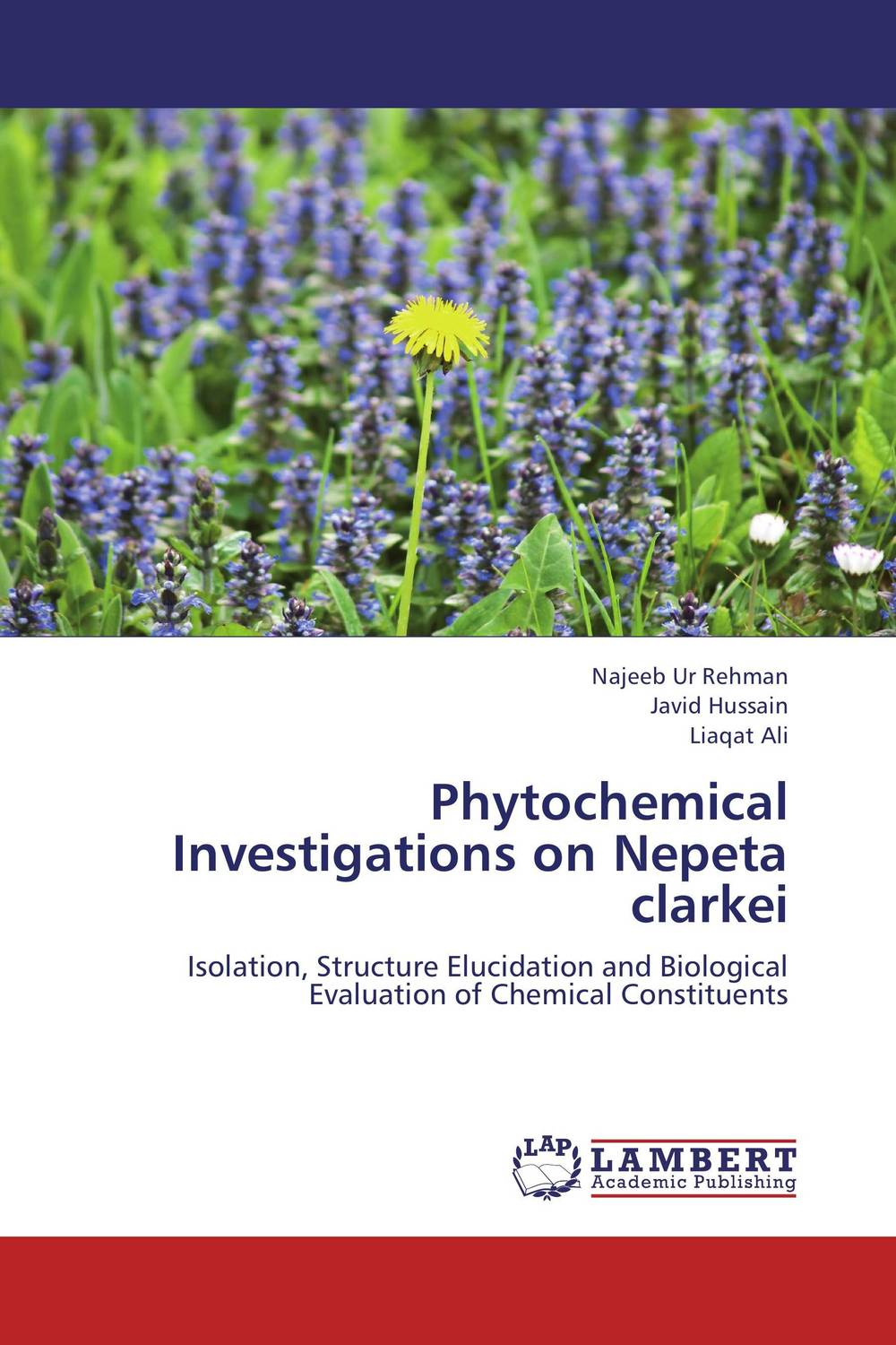Phytochemical Investigations on Nepeta clarkei s j pawar and jin h huang investigations on electroacoustic transducers