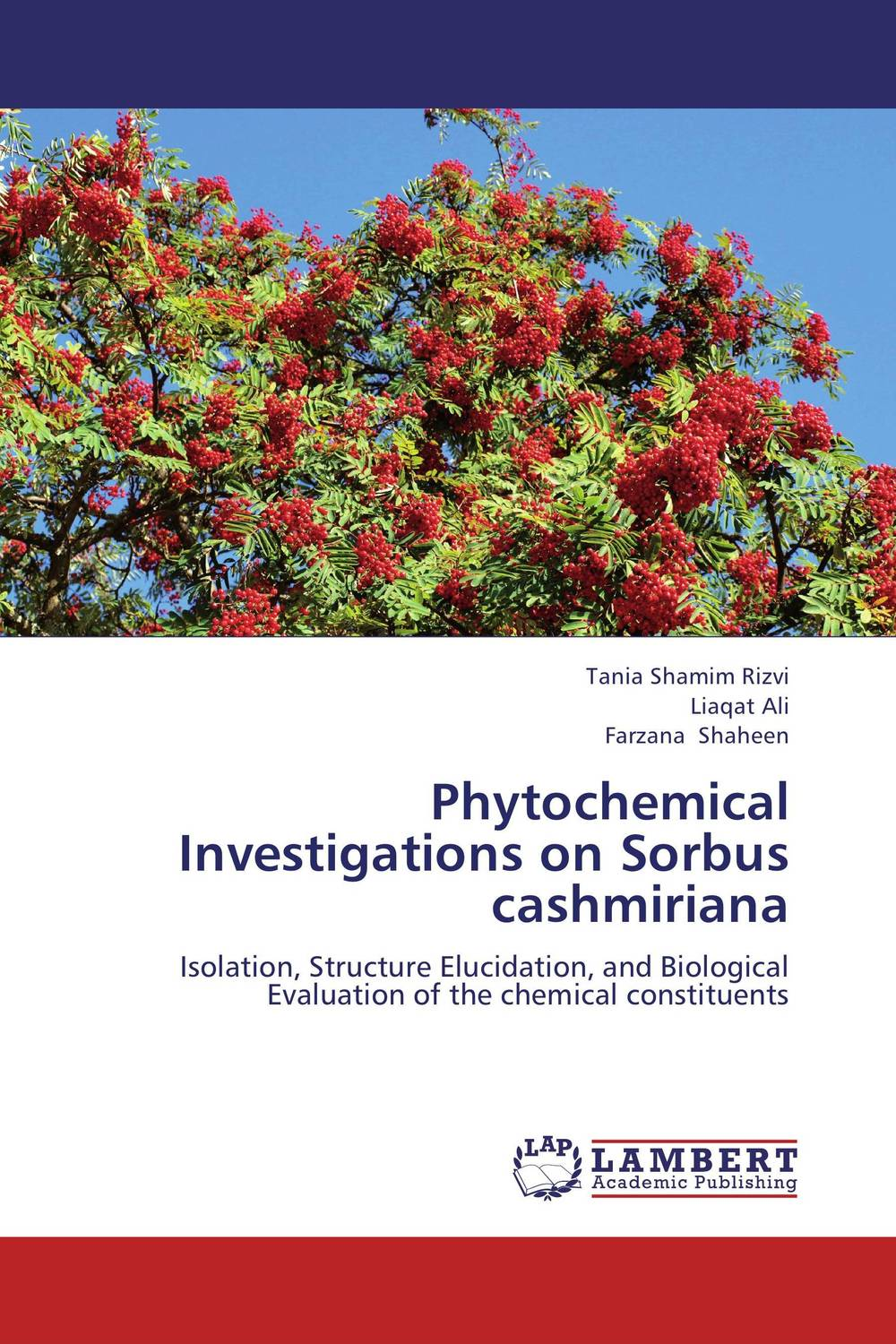 Phytochemical Investigations on Sorbus cashmiriana x ray crystallographic and theoretical investigations on aromatic compounds