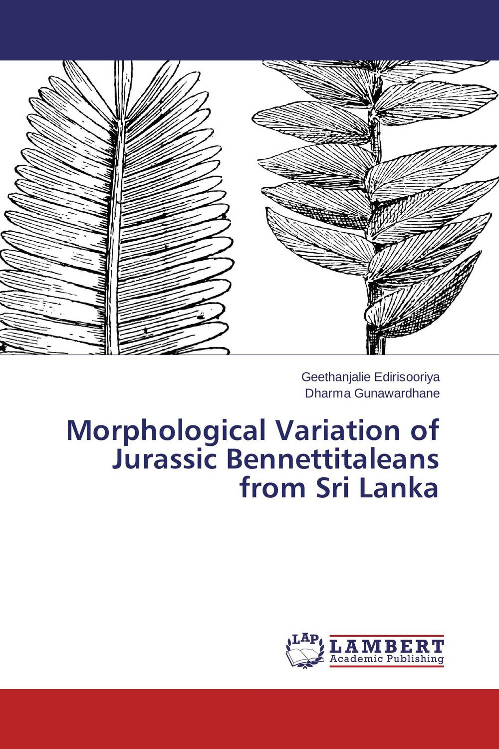 Morphological Variation of Jurassic Bennettitaleans from Sri Lanka morphological variation of jurassic bennettitaleans from sri lanka