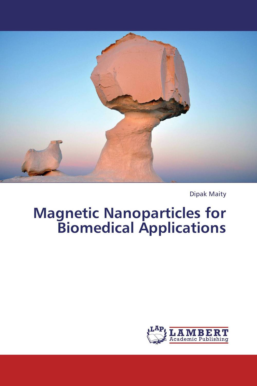 Magnetic Nanoparticles for Biomedical Applications bioactive electrodes for biomedical applications