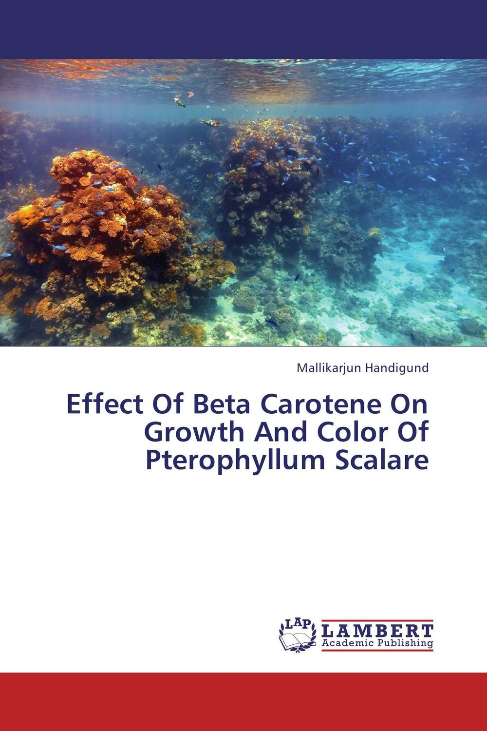 Effect Of Beta Carotene On Growth And Color Of Pterophyllum Scalare effect of beta carotene on growth and color of pterophyllum scalare