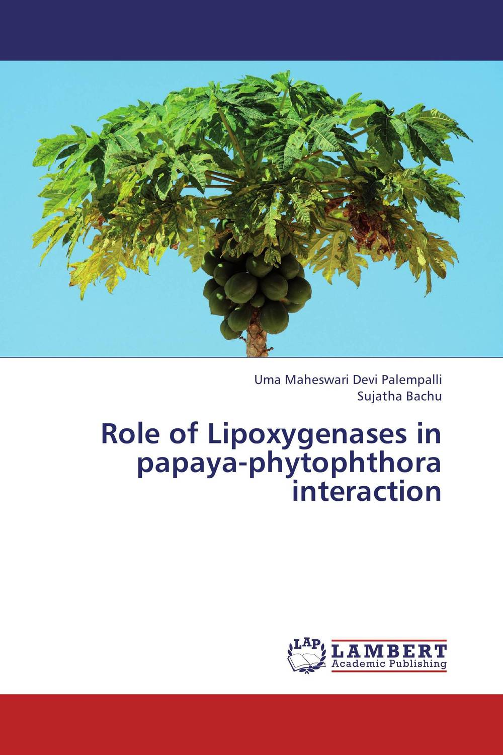 Role of Lipoxygenases in papaya-phytophthora interaction the role of evaluation as a mechanism for advancing principal practice
