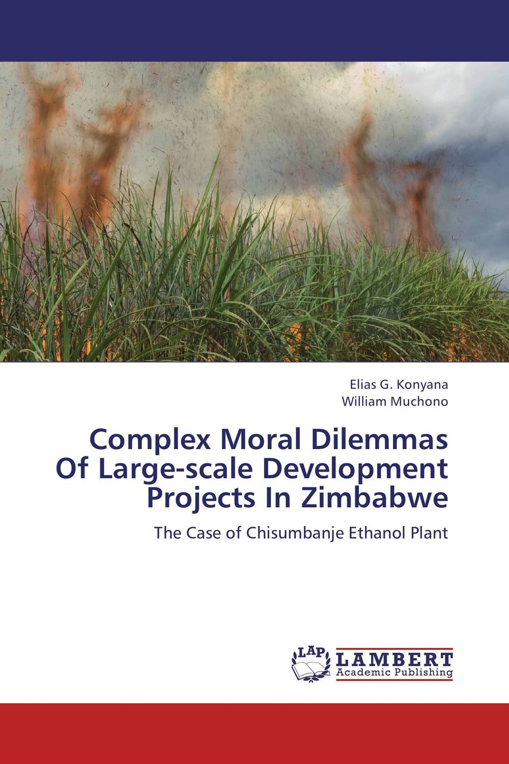 Complex Moral Dilemmas Of Large-scale Development Projects In Zimbabwe addison wiggin endless money the moral hazards of socialism