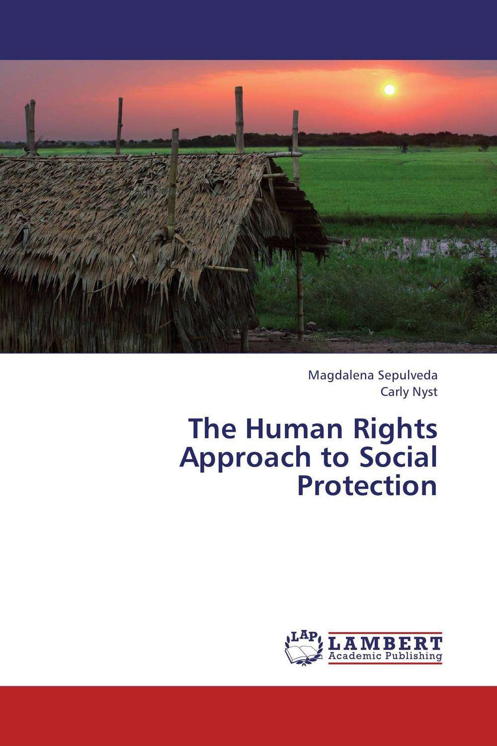 The Human Rights Approach to Social Protection victims stories and the advancement of human rights