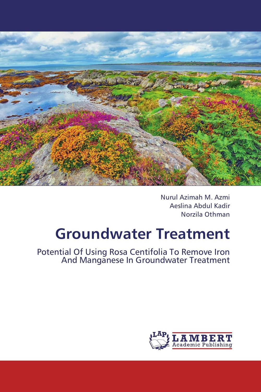 Groundwater Treatment nicholas p cheremisinoff groundwater remediation and treatment technologies
