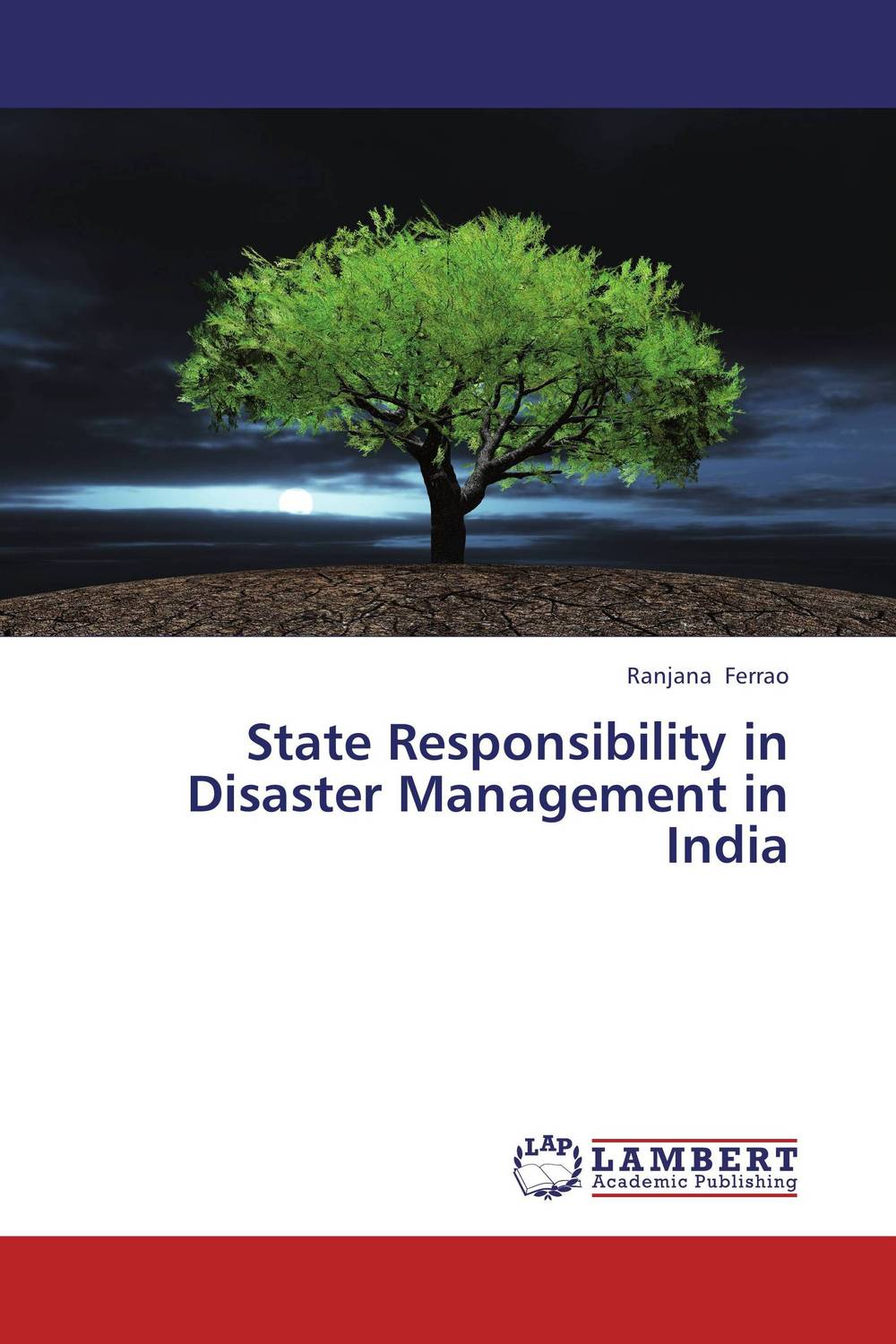 State Responsibility in Disaster Management in India a royal disaster