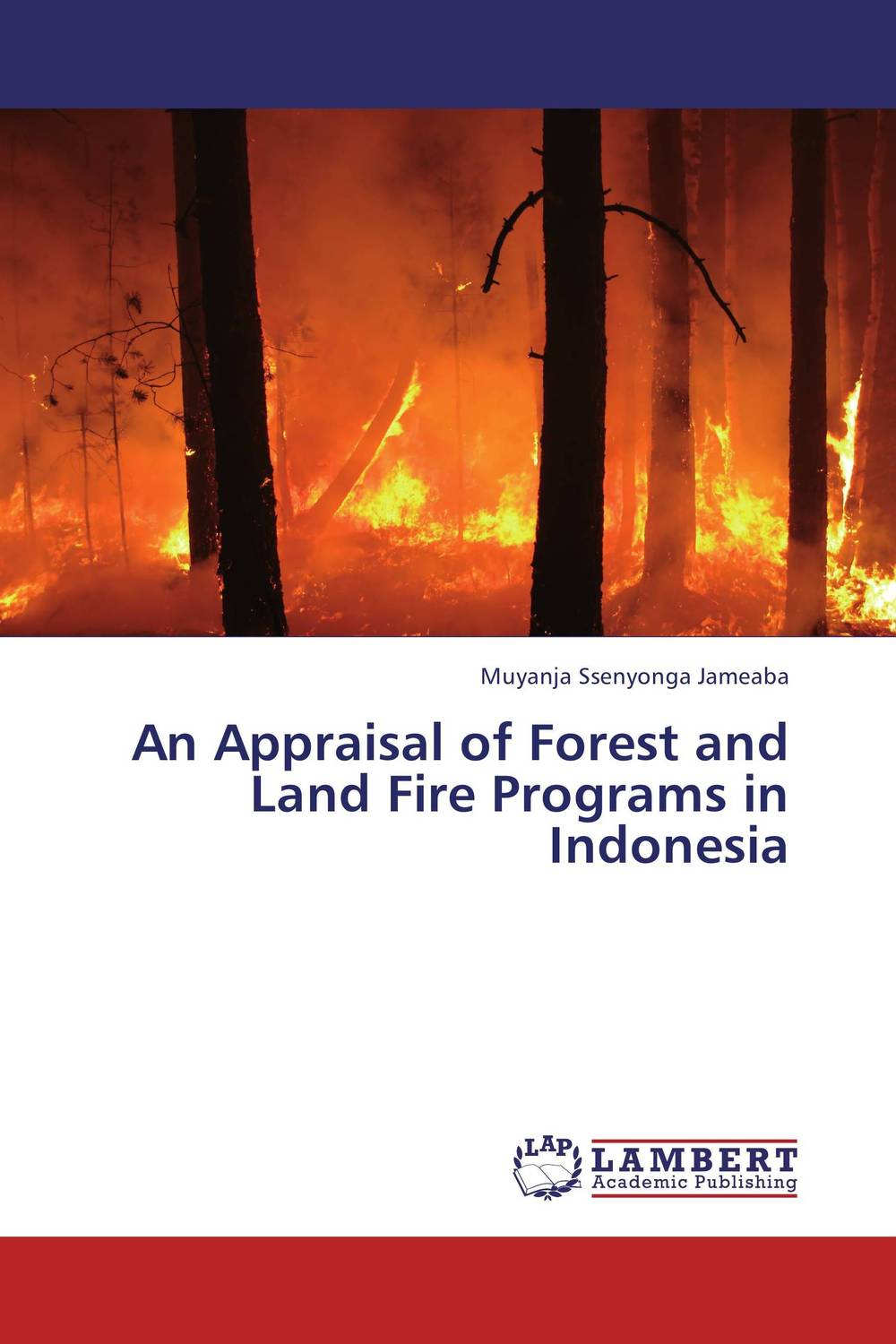 An Appraisal of Forest and Land Fire Programs in Indonesia