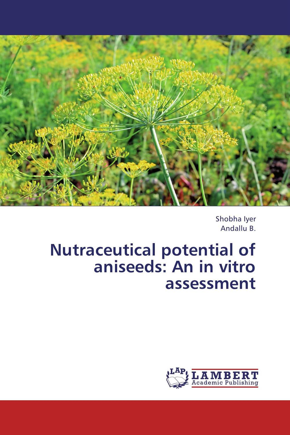Nutraceutical potential of aniseeds: An in vitro assessment phytochemical investigation of the flavonoids