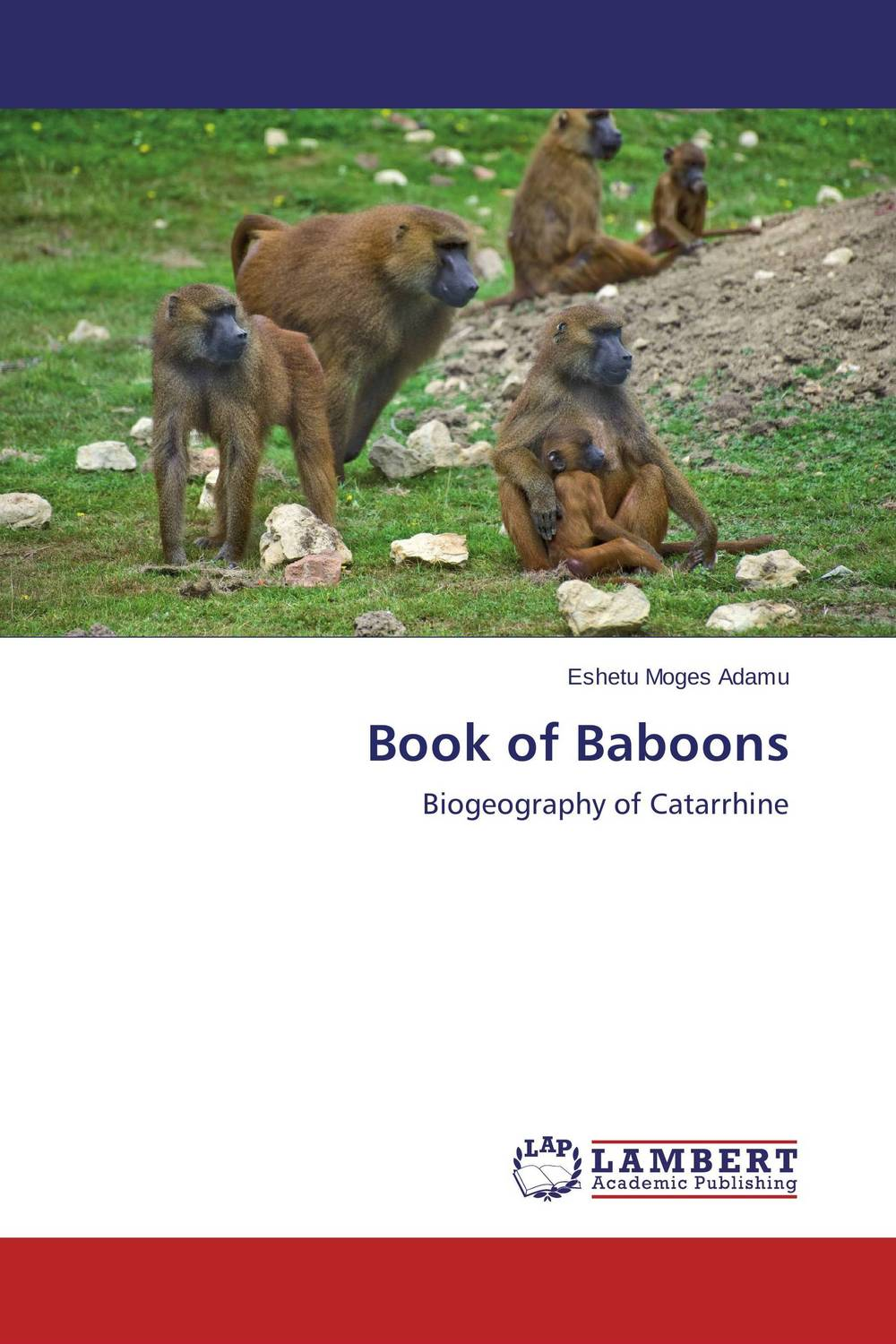 Book of Baboons the flying beaver brothers and the hot air baboons