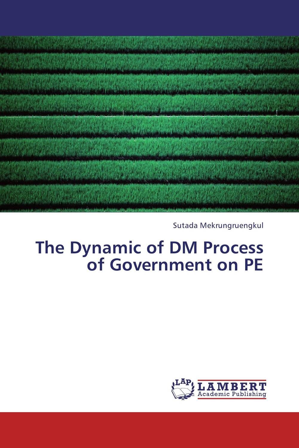 The Dynamic of DM Process of Government on PE sb 1070 a case study on state sponsored immigration policy