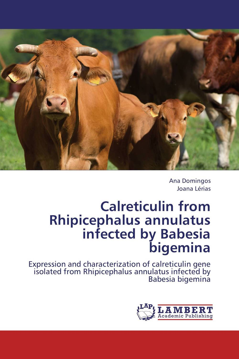 Calreticulin from Rhipicephalus annulatus infected by Babesia bigemina vectorial capacity of ticks